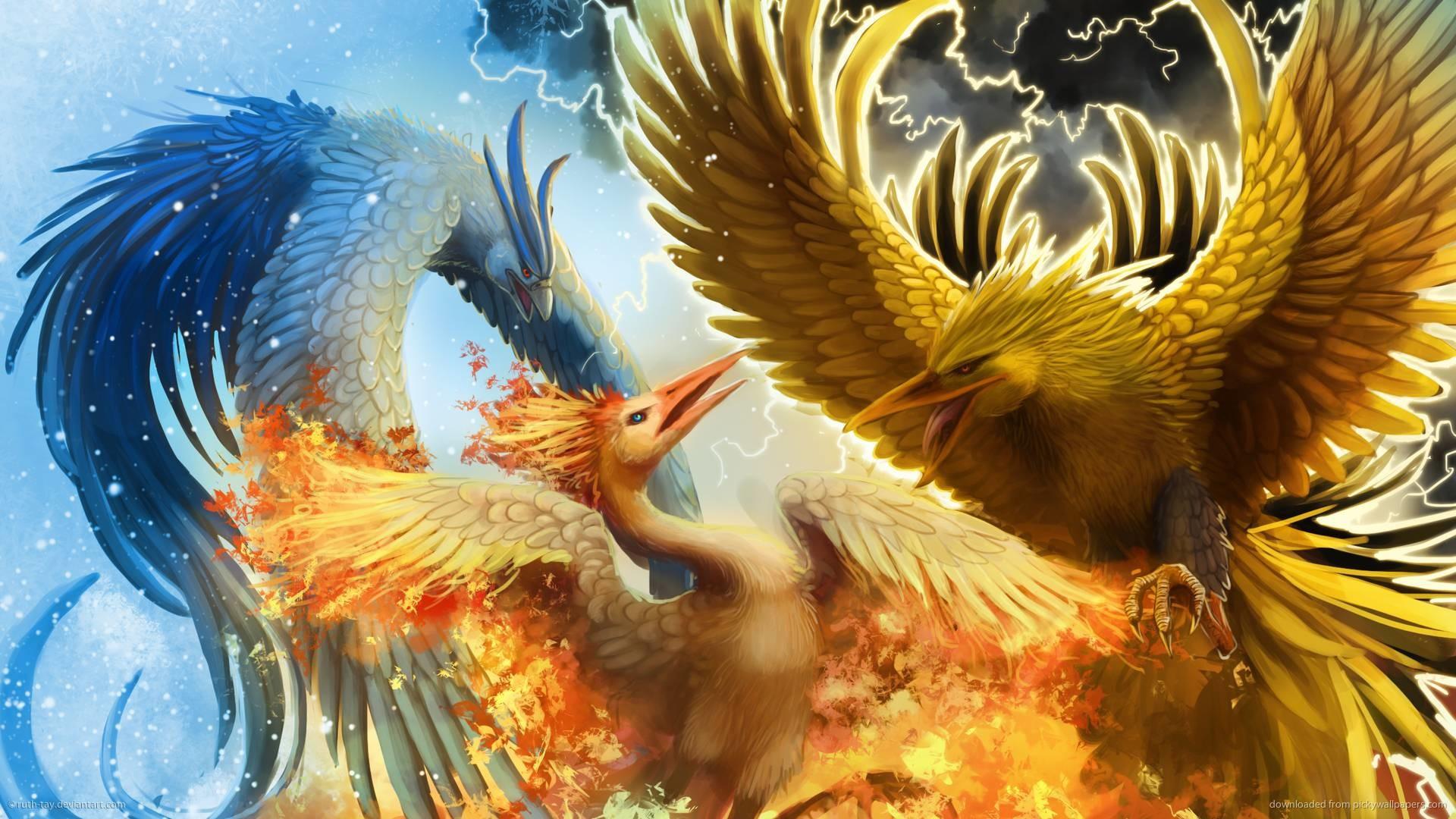 Legendary Bird Pokemon | 4hotos