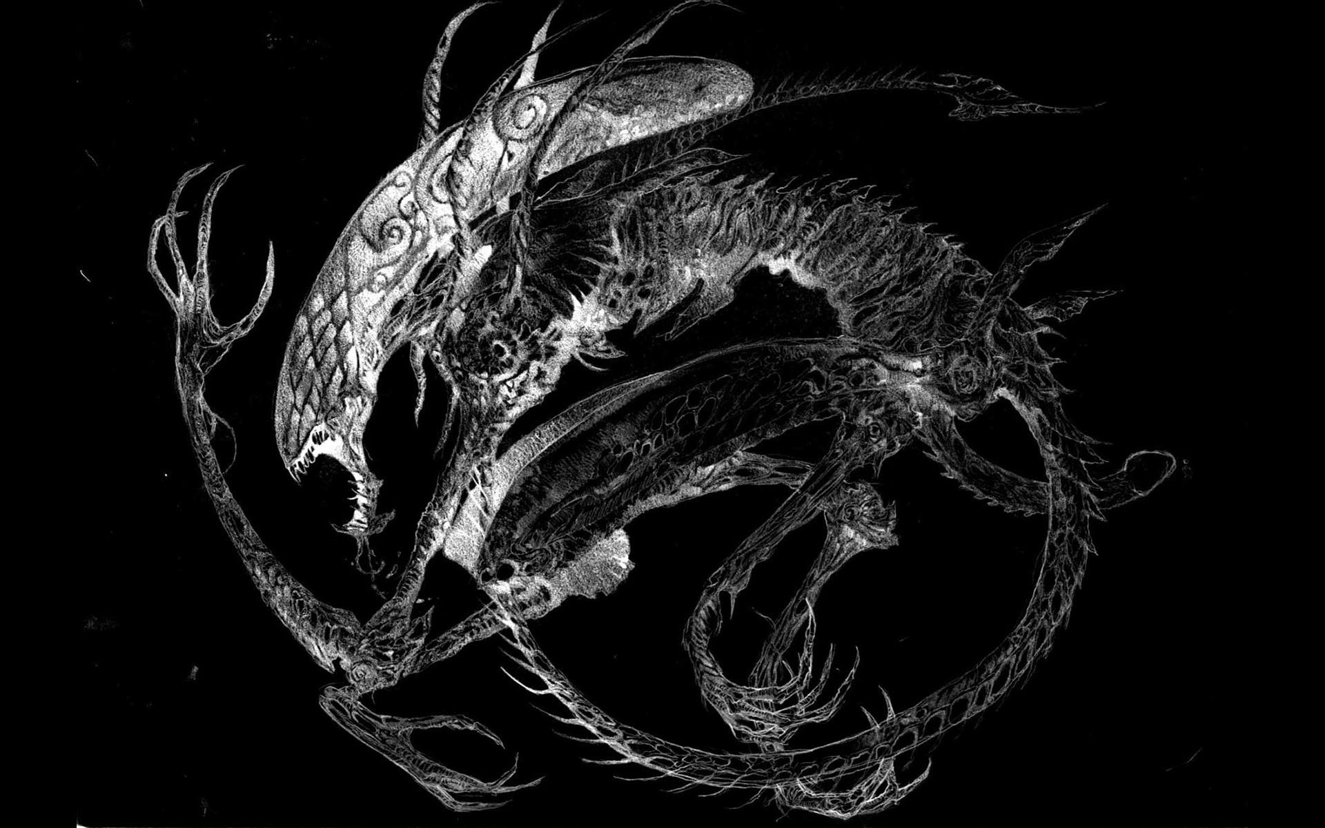 movies Xenomorph science fiction Alien fan art black background H_R_ Giger  wallpaper