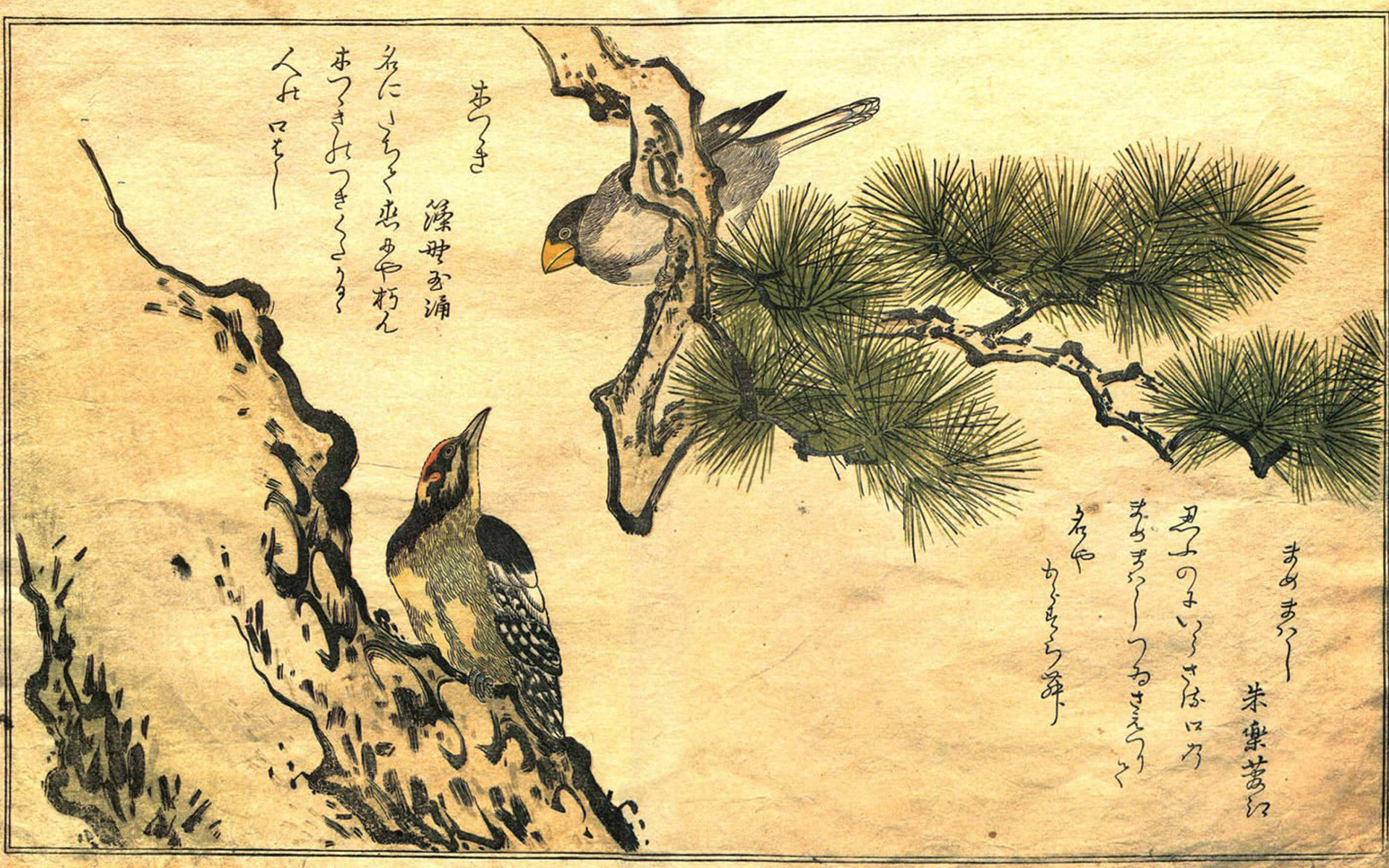 Traditional Japanese Art Wallpaper – image #817493