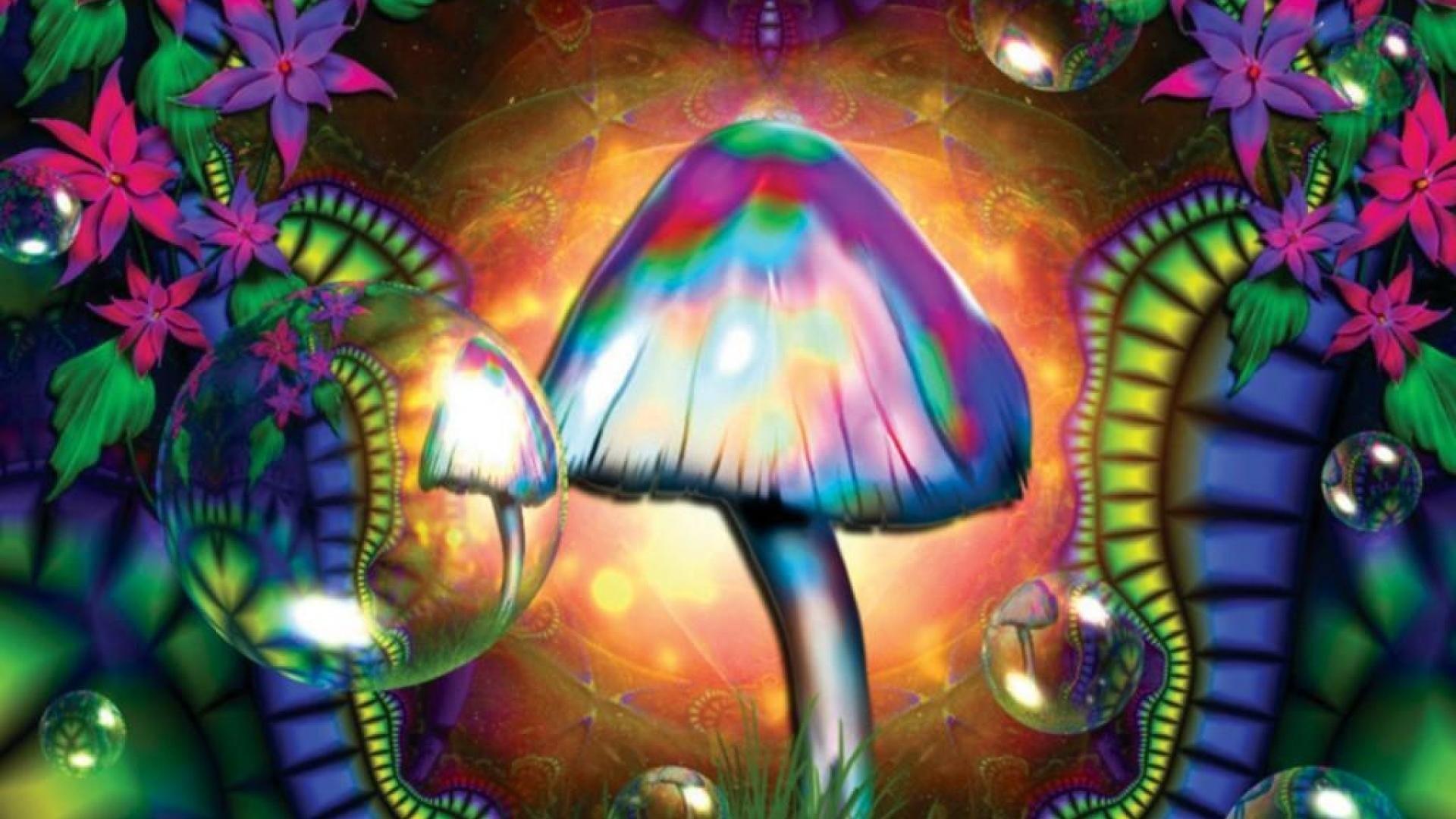 Trippy Mushroom Wallpaper For Iphone – Uncalke.com