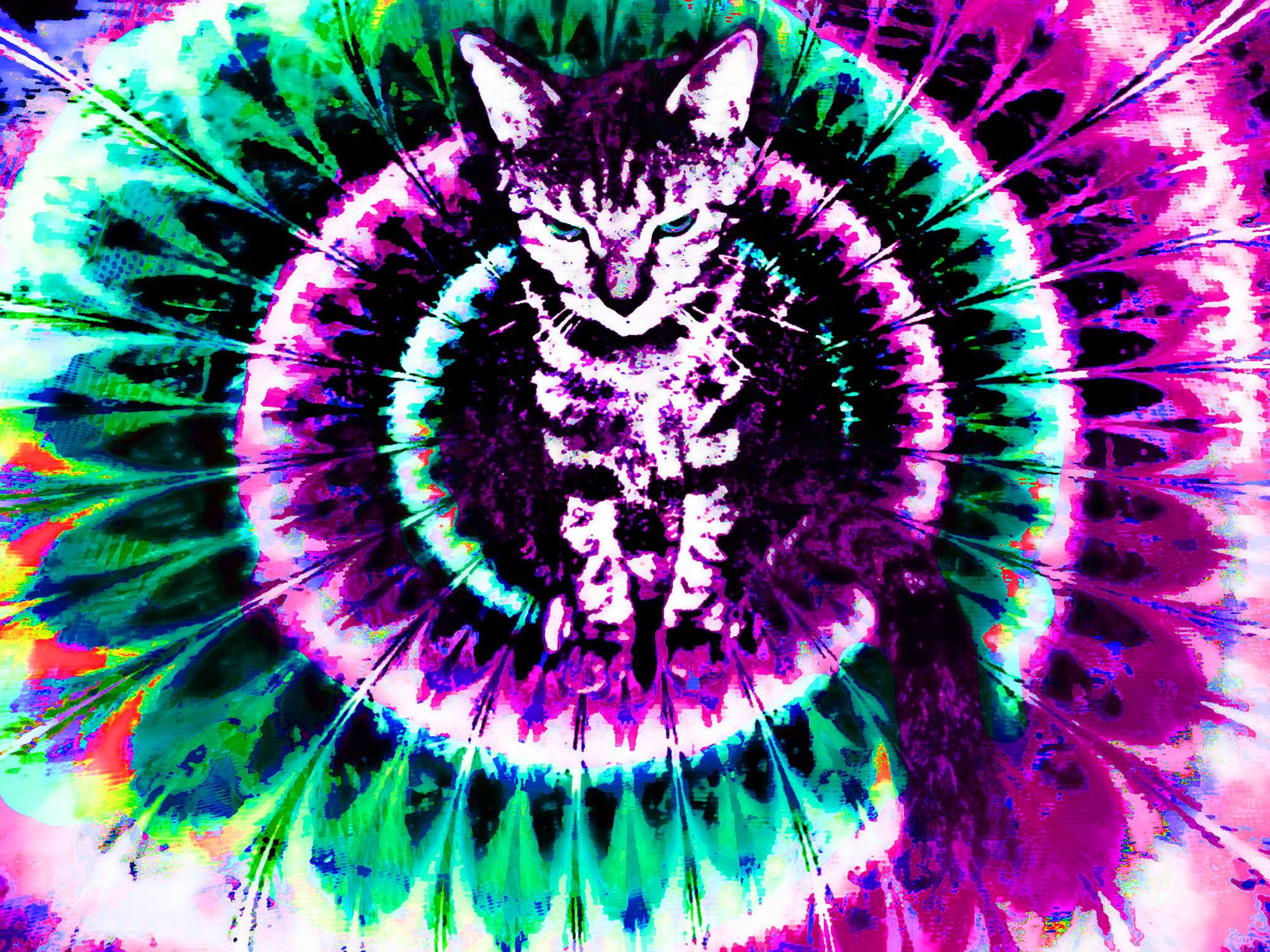 Trippy Wallpaper – www.wallpapers-in-hd.com