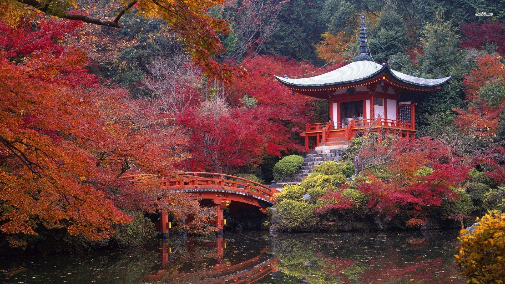 Full HD p Japan Wallpapers HD Desktop Backgrounds x