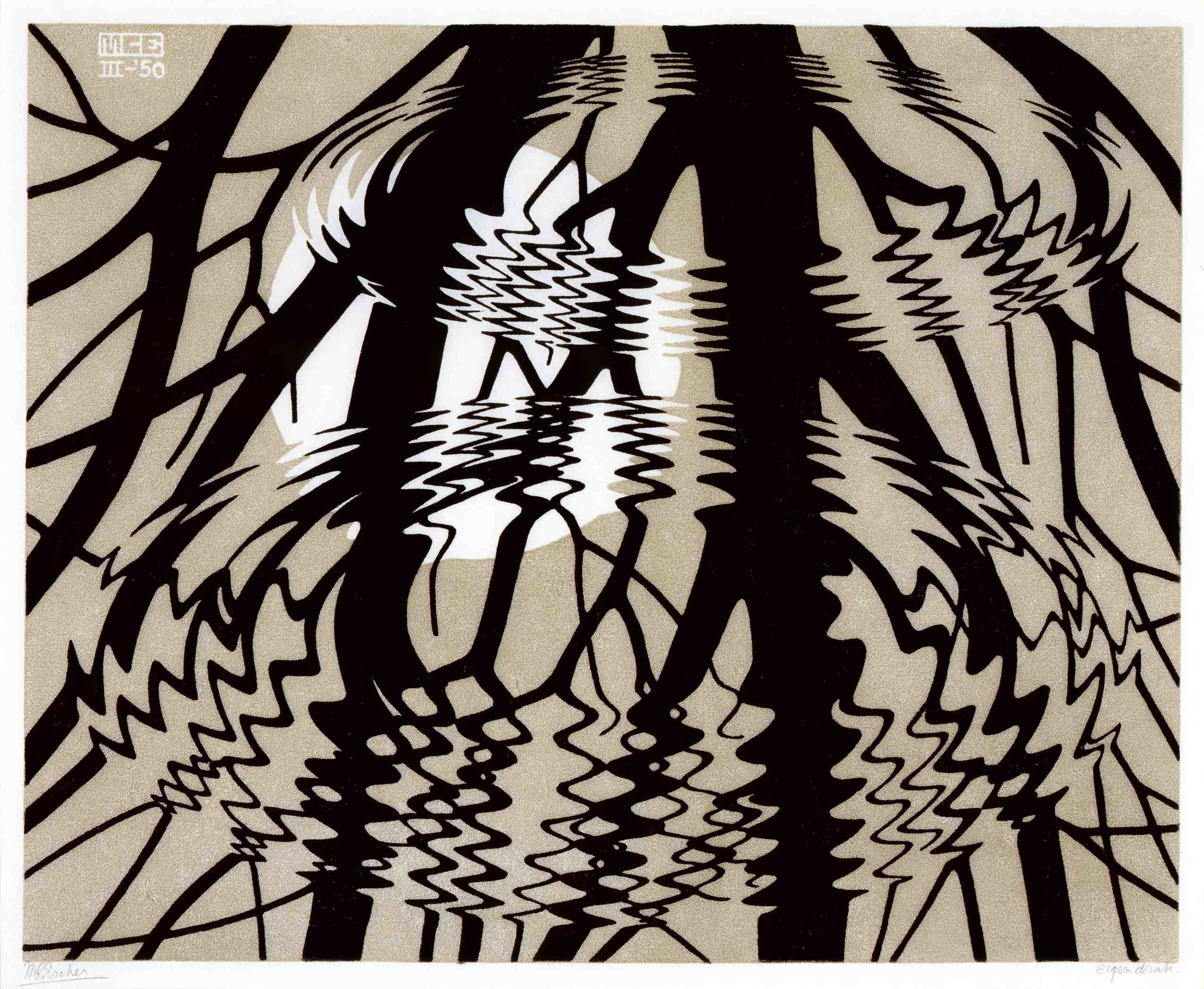 M.C. ESCHER, Rippled Surface (pattern/repeated zigszags of rings)