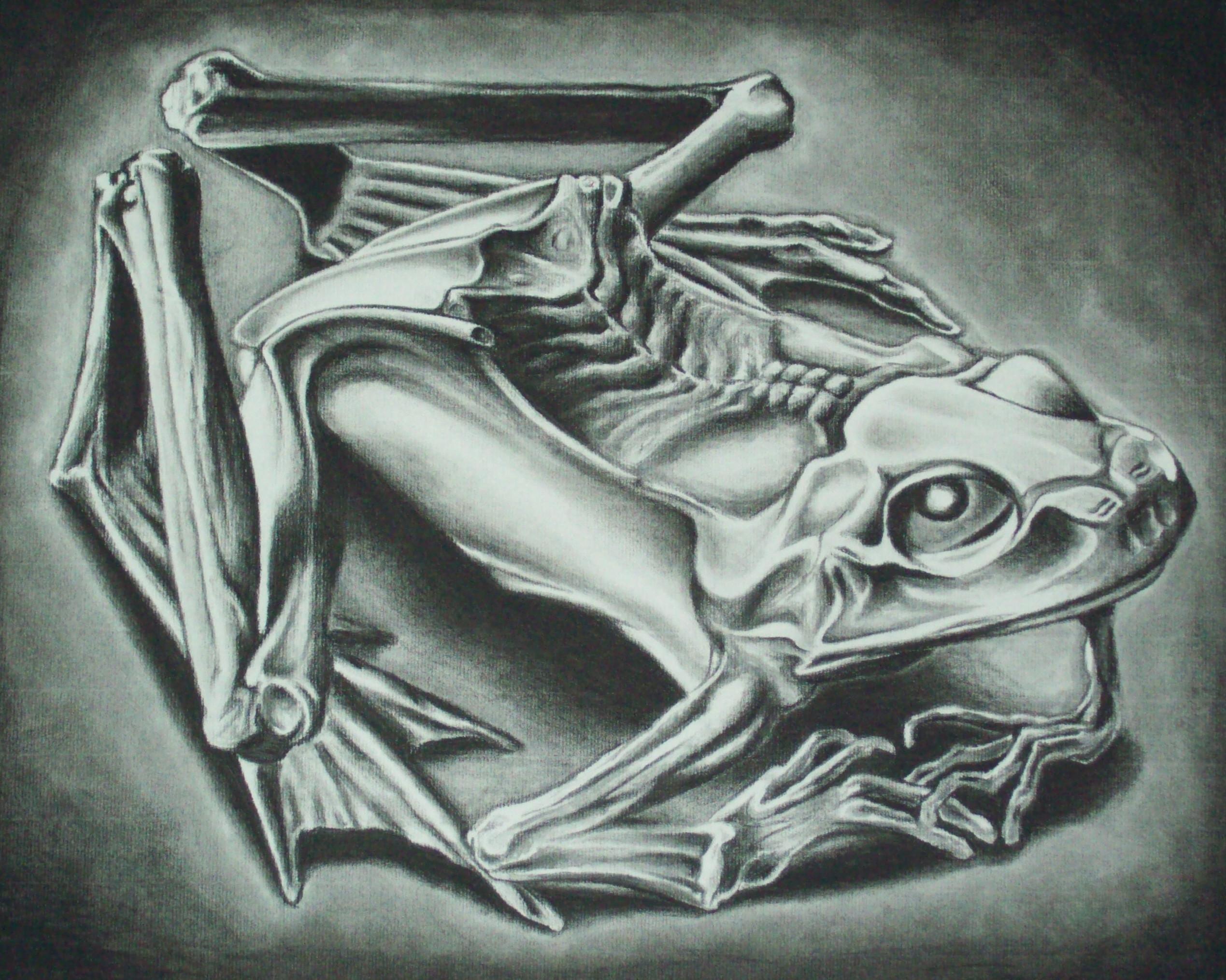 MC Escher Frog Wallpaper