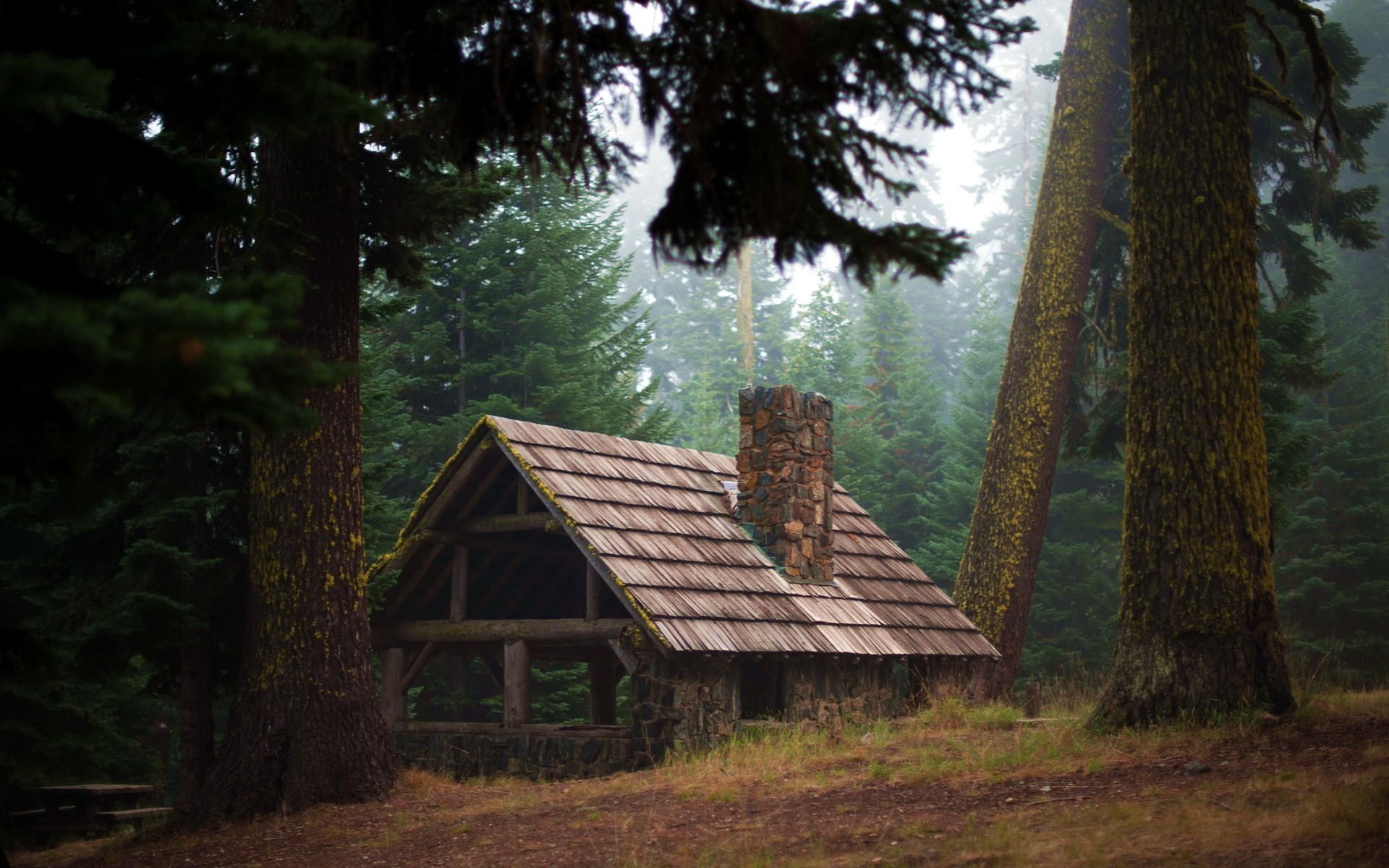 … forest lodge nature fog mood d wallpaper 178454 …