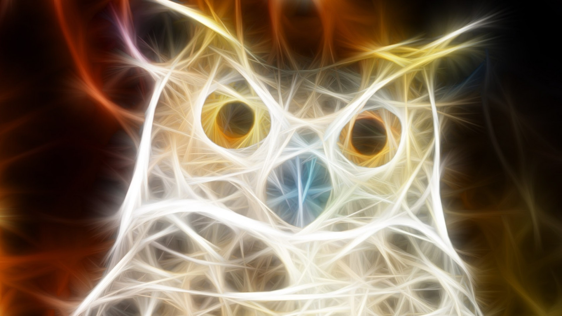 Wallpaper owl, bird, light, shine