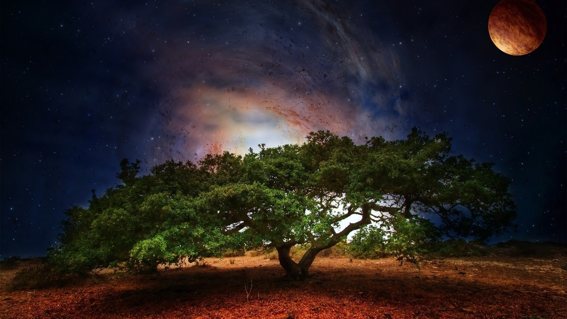 Milky Way Galaxy Visible In The Night Sky Wallpaper 640×1136 Galaxy Sky  Wallpapers (