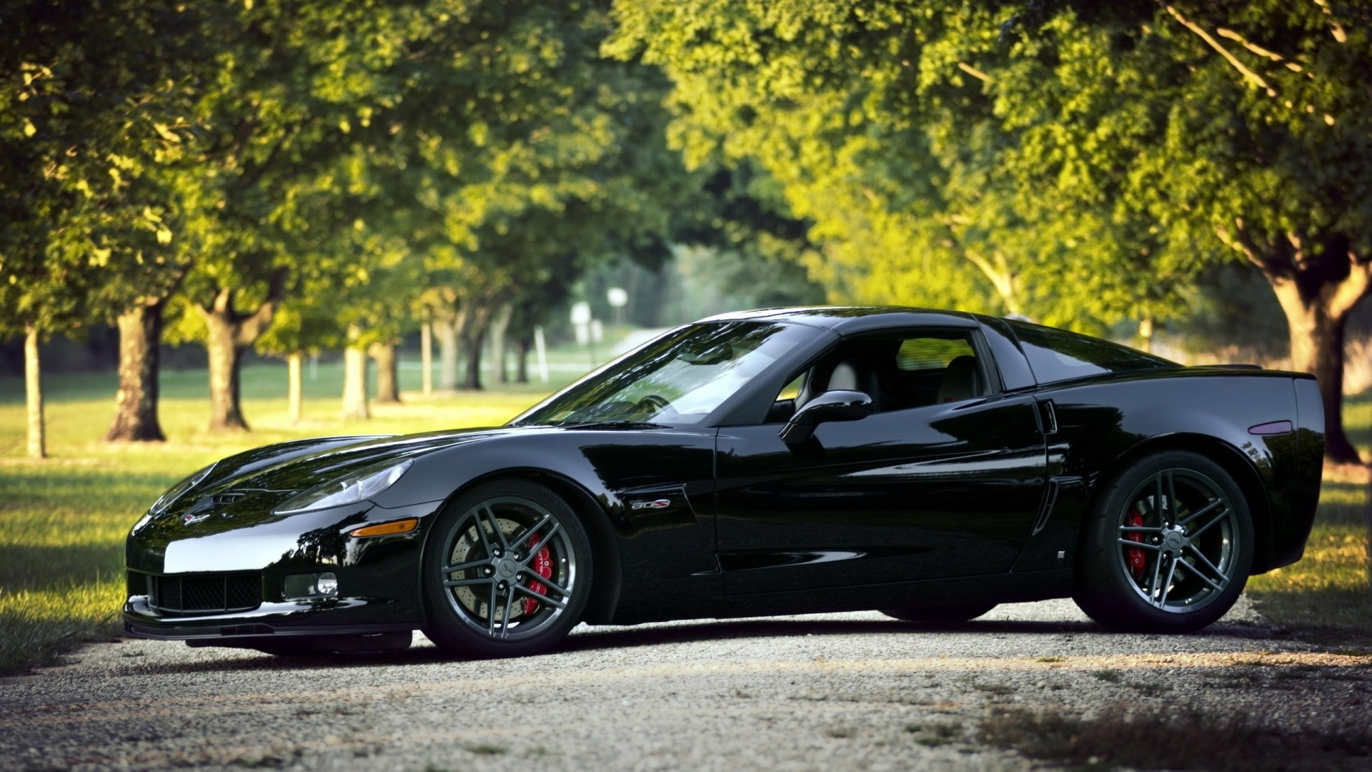 Wallpaper chevrolet corvette, black, nature, cars