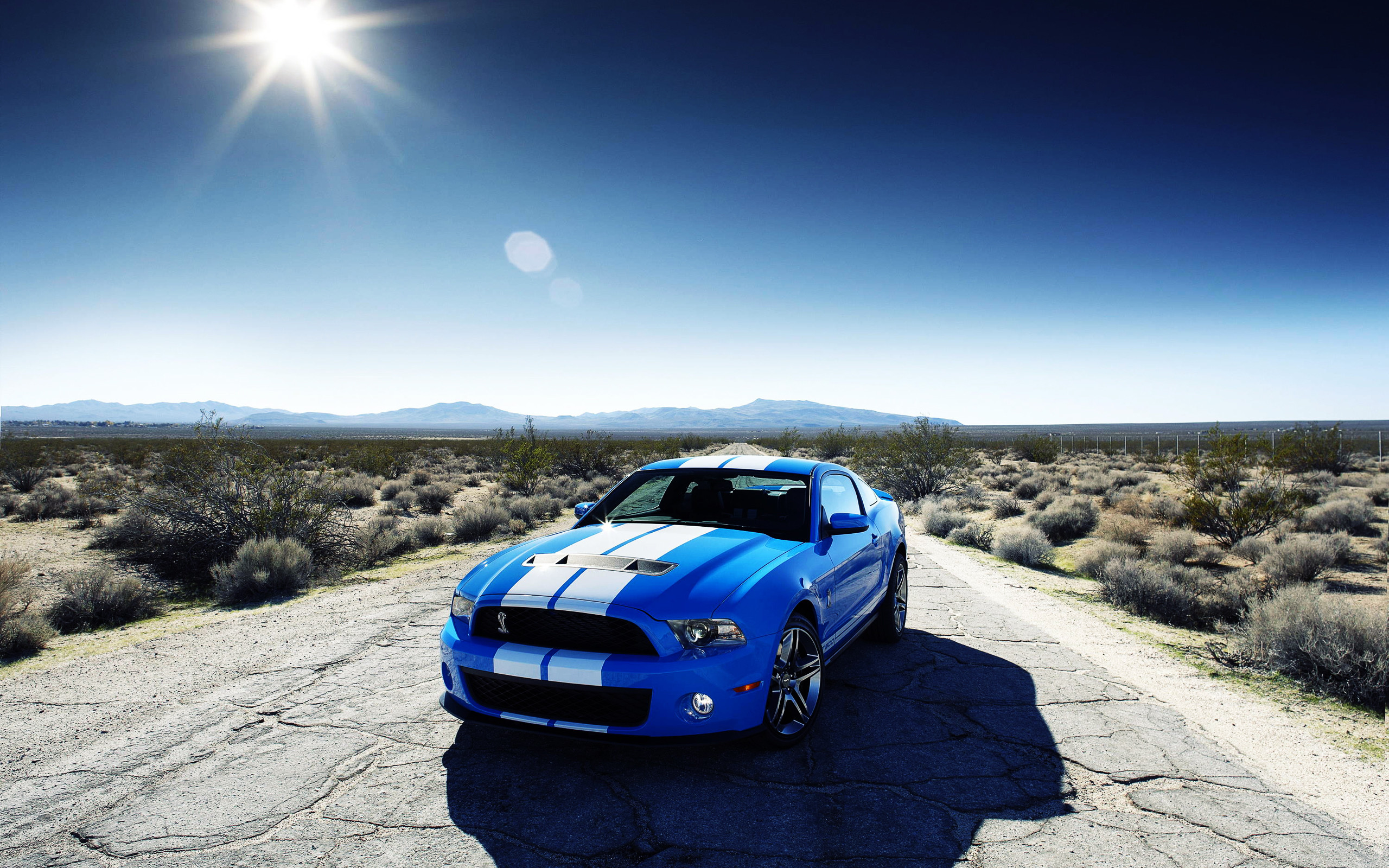 Ford Shelby GT500 Car Wallpapers | HD Wallpapers