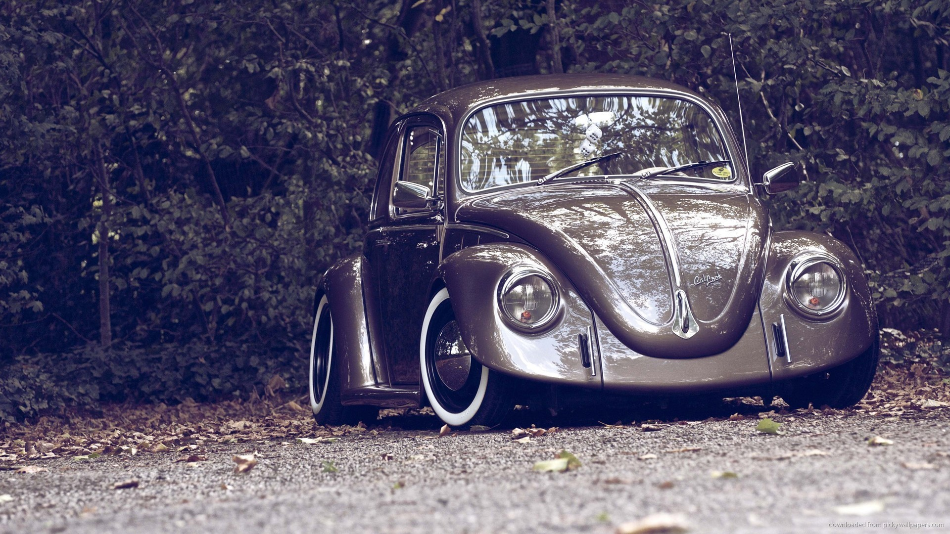 Brown Volkswagen Beetle Stance picture