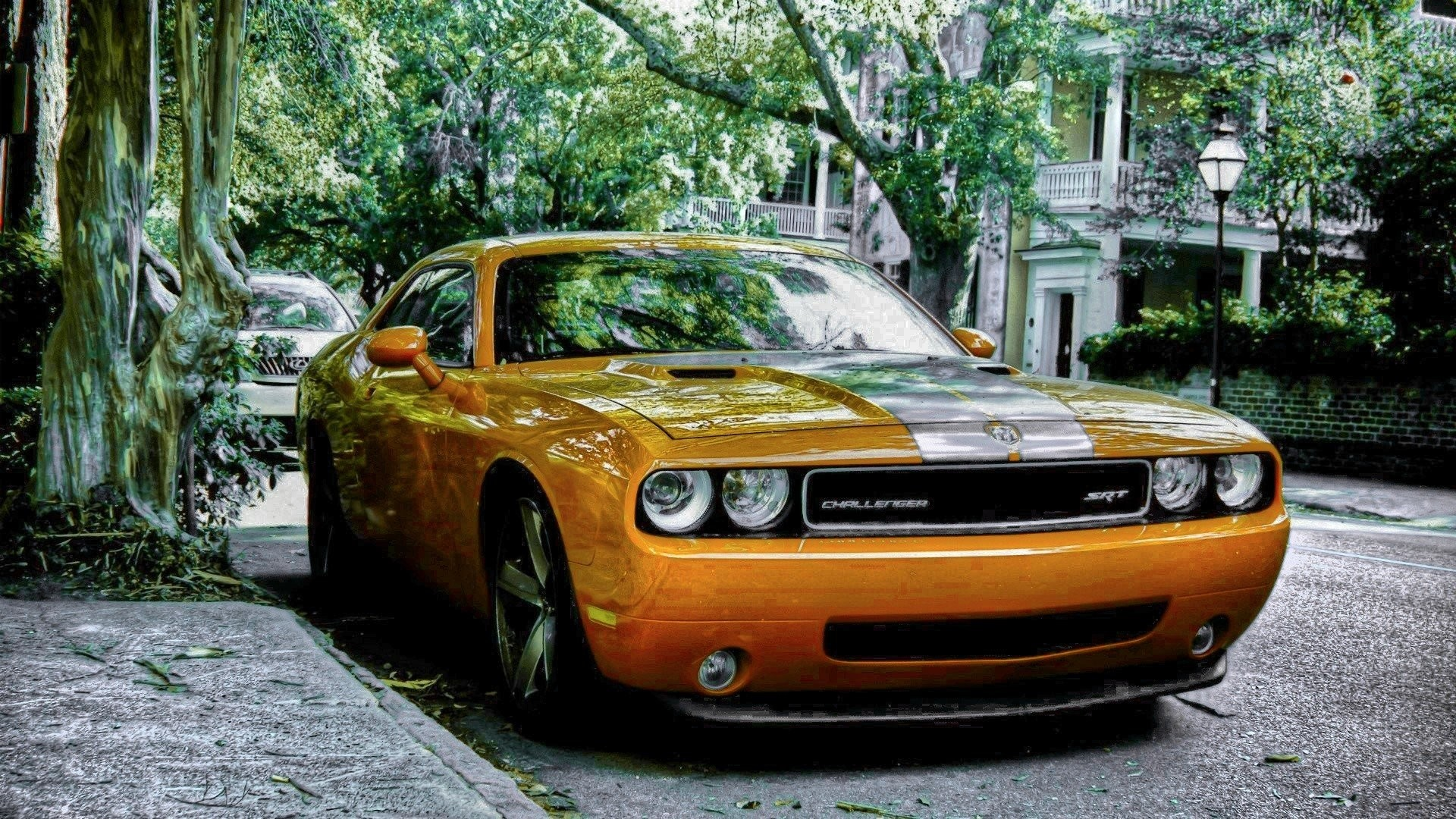 Cars Dodge Challenger SRT muscle car wallpaper | | 335633 |  WallpaperUP