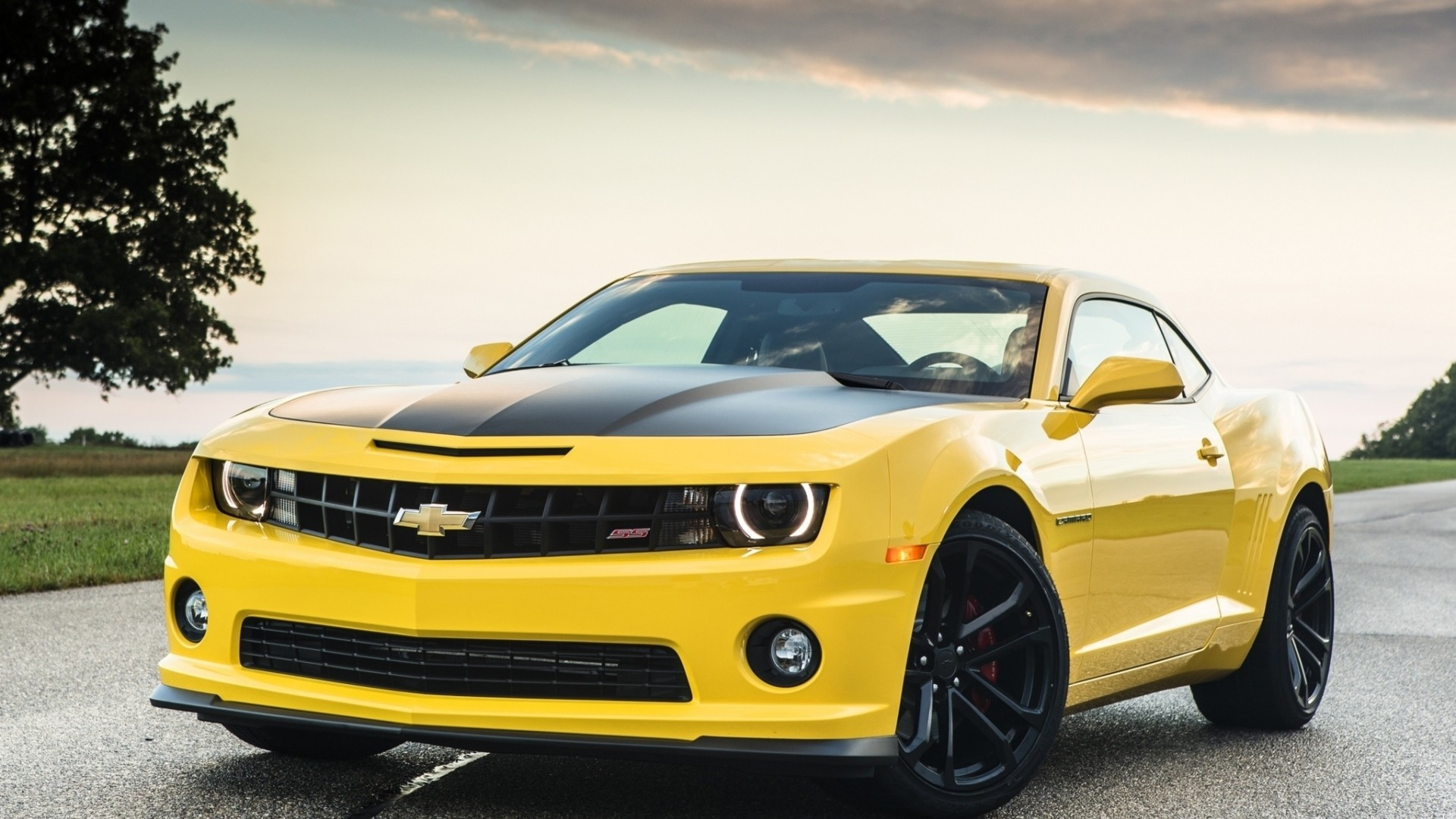 Wallpaper chevrolet, camaro, 1le, yellow, front, muscle car, road