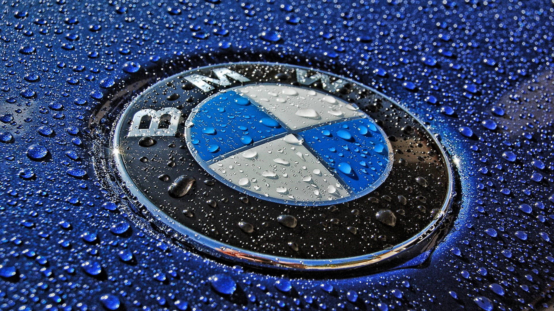 BMW Logo HD Images