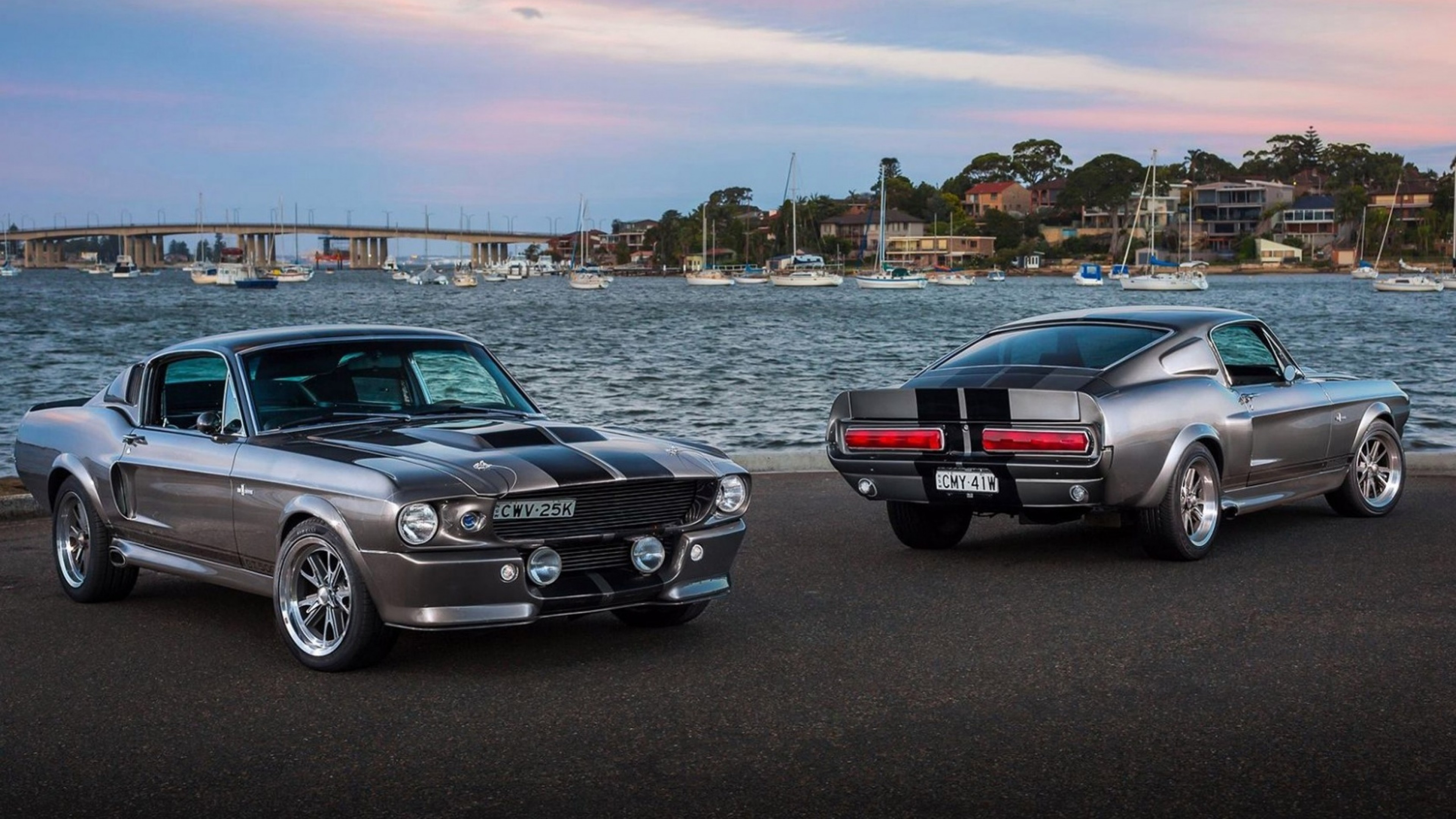 Preview wallpaper ford, mustang, silver, sea 3840×2160