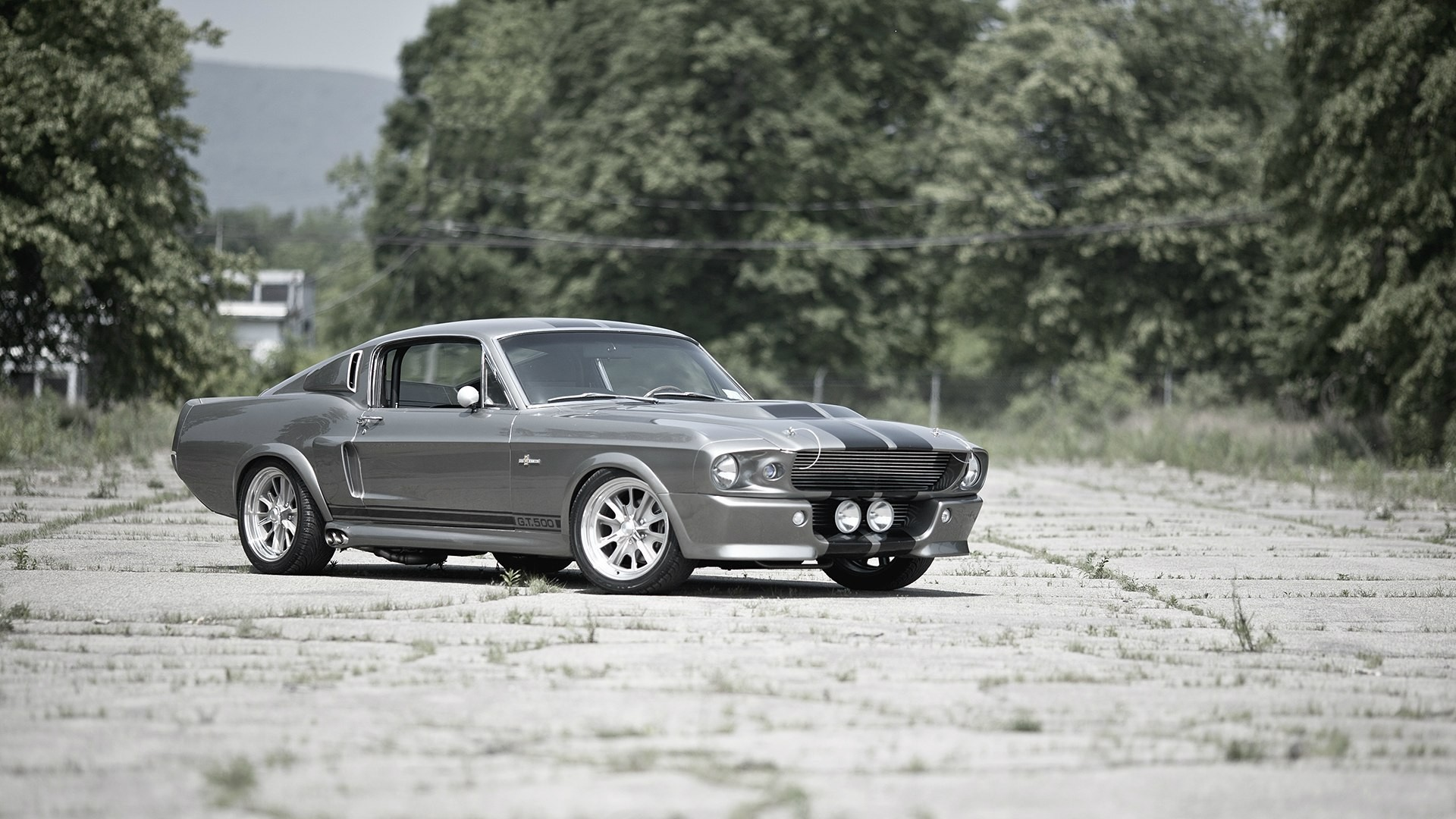 Wallpaper Abyss Erkunden Sie die Sammlung Ford Mustang Mustang 289241 .