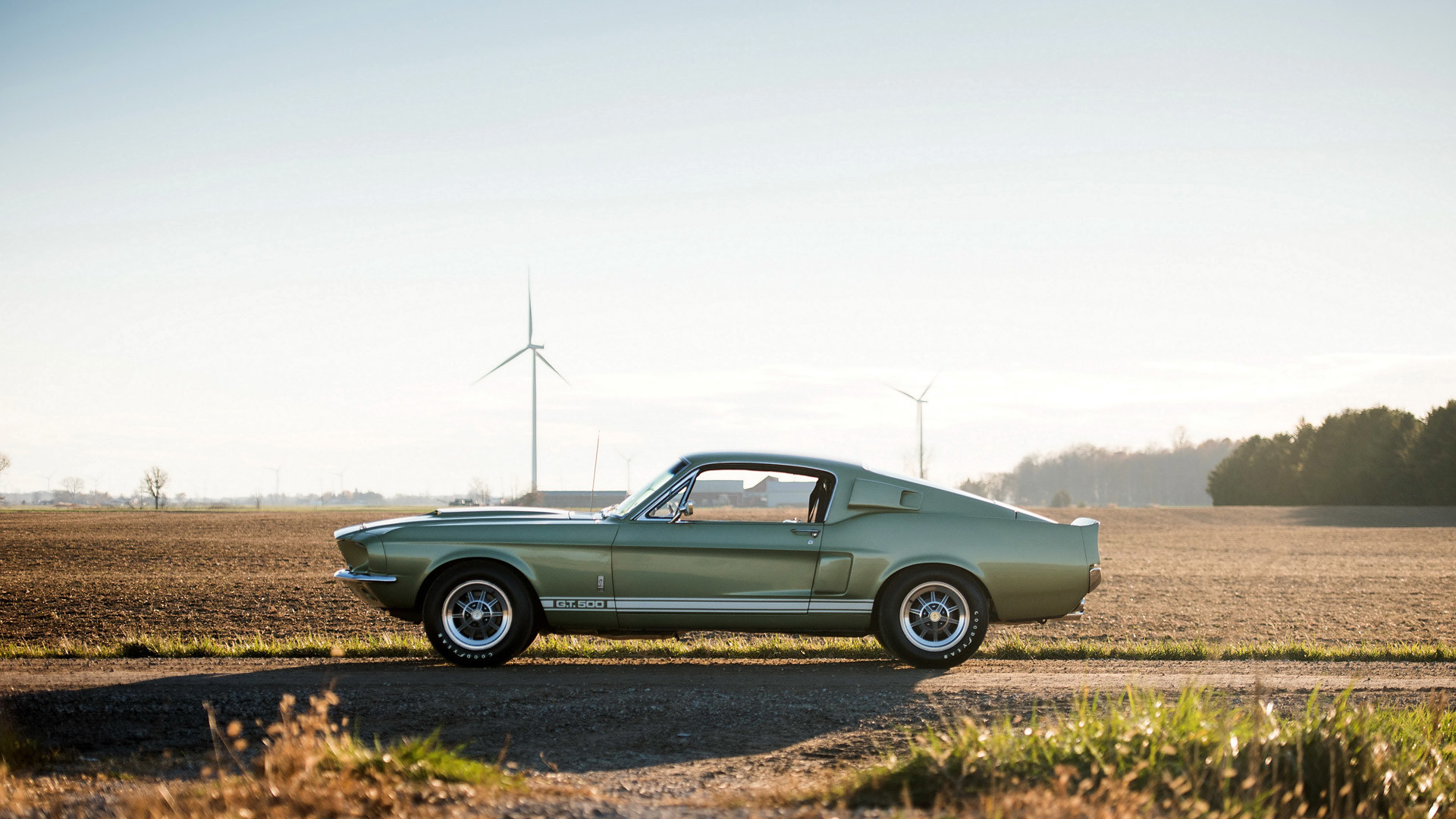 1967 Ford Shelby Mustang GT500 picture