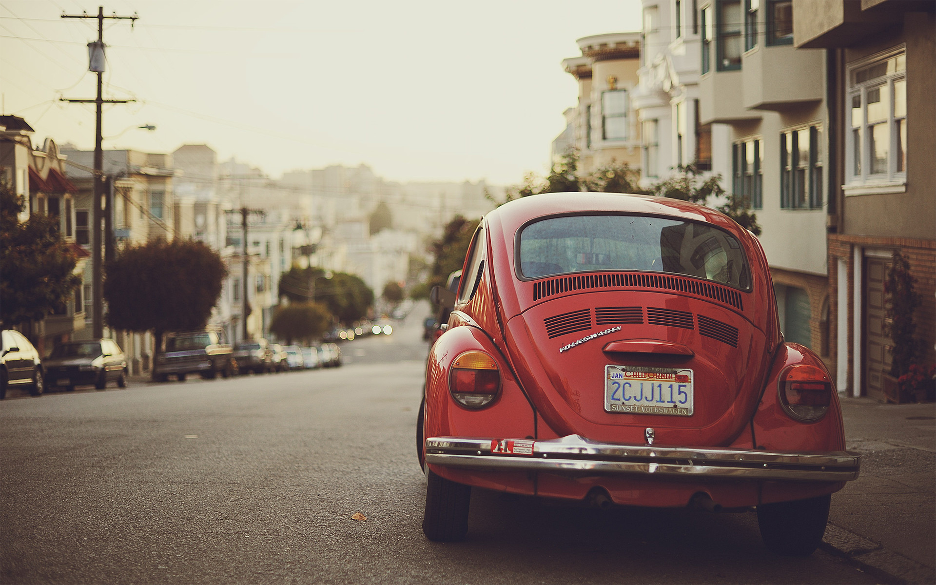 Volkswagen Beetle images vw beetle HD wallpaper and background photos