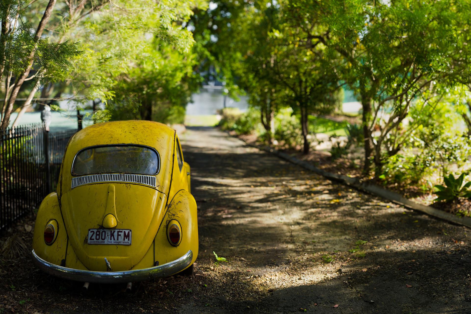 Vehicles – Volkswagen Beetle Wallpaper