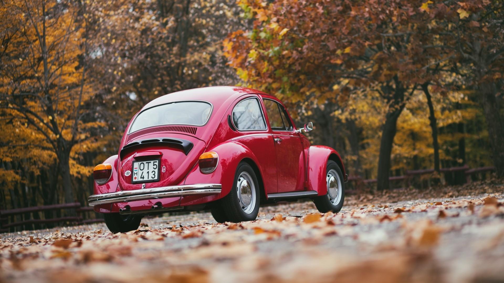 Wallpaper volkswagen, red, rear view