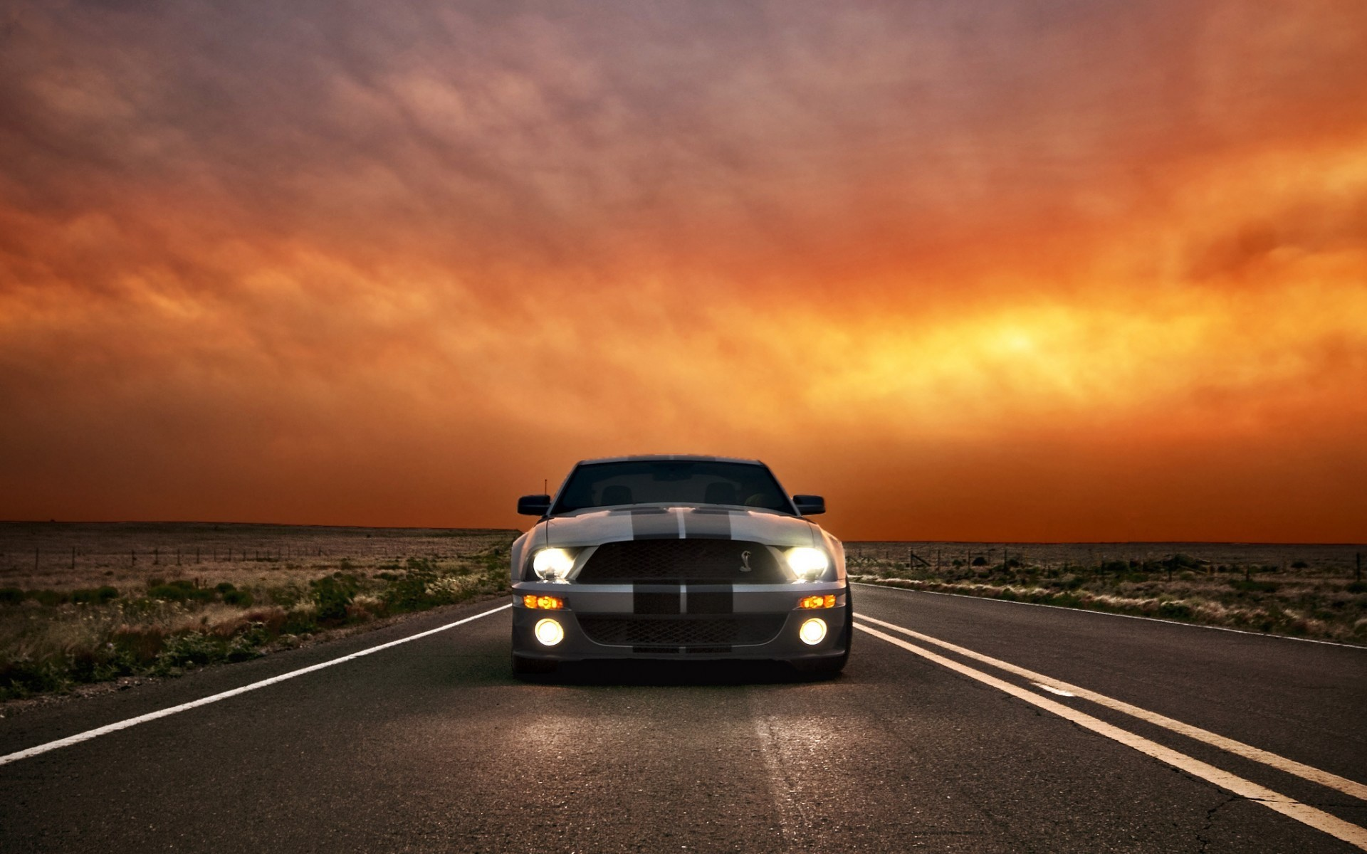 ford mustang shelby cobra gt 500 wallpaper for mac computers, Ed Peacock  2017-03