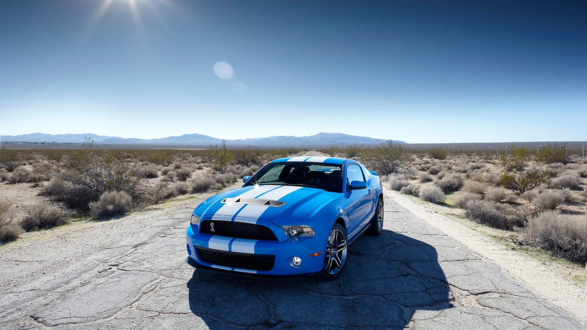 Car wallpapers: Ford Mustang Shelby Cobra