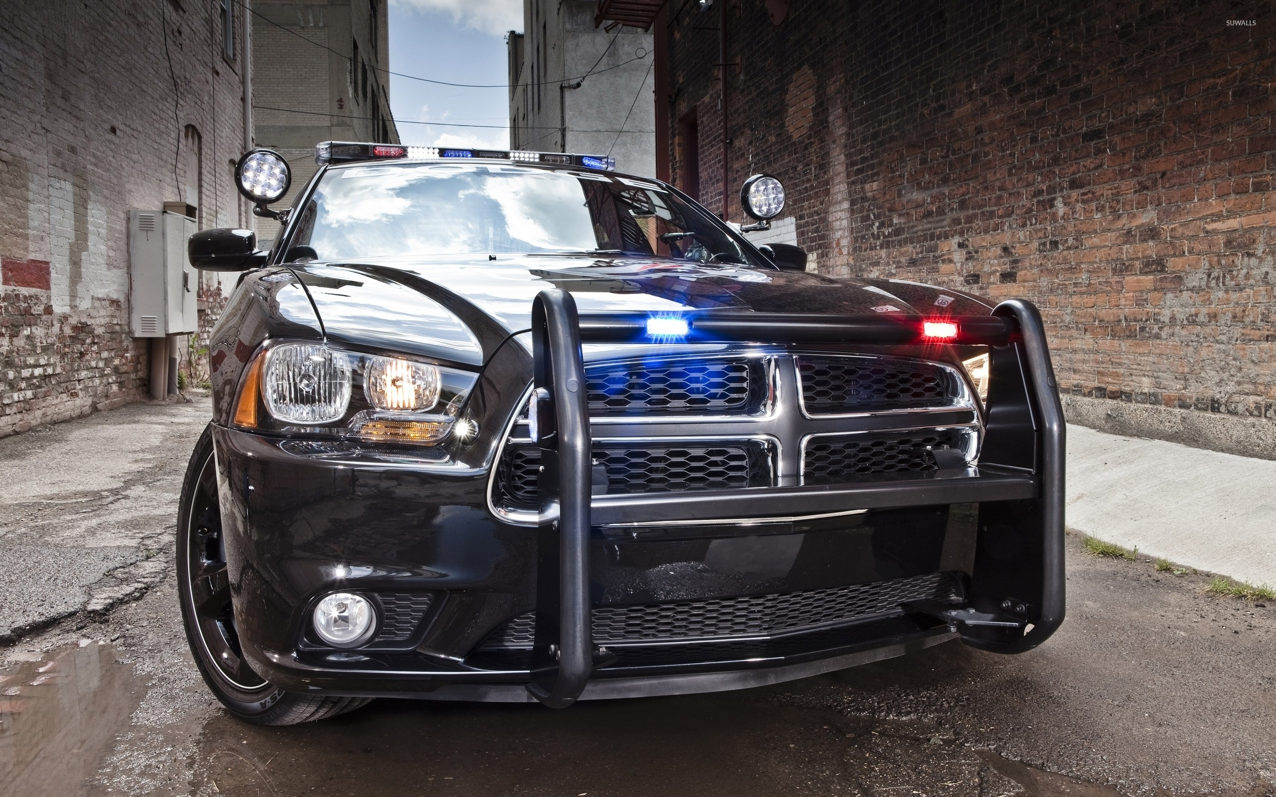 Dodge Charger police car [2] wallpaper