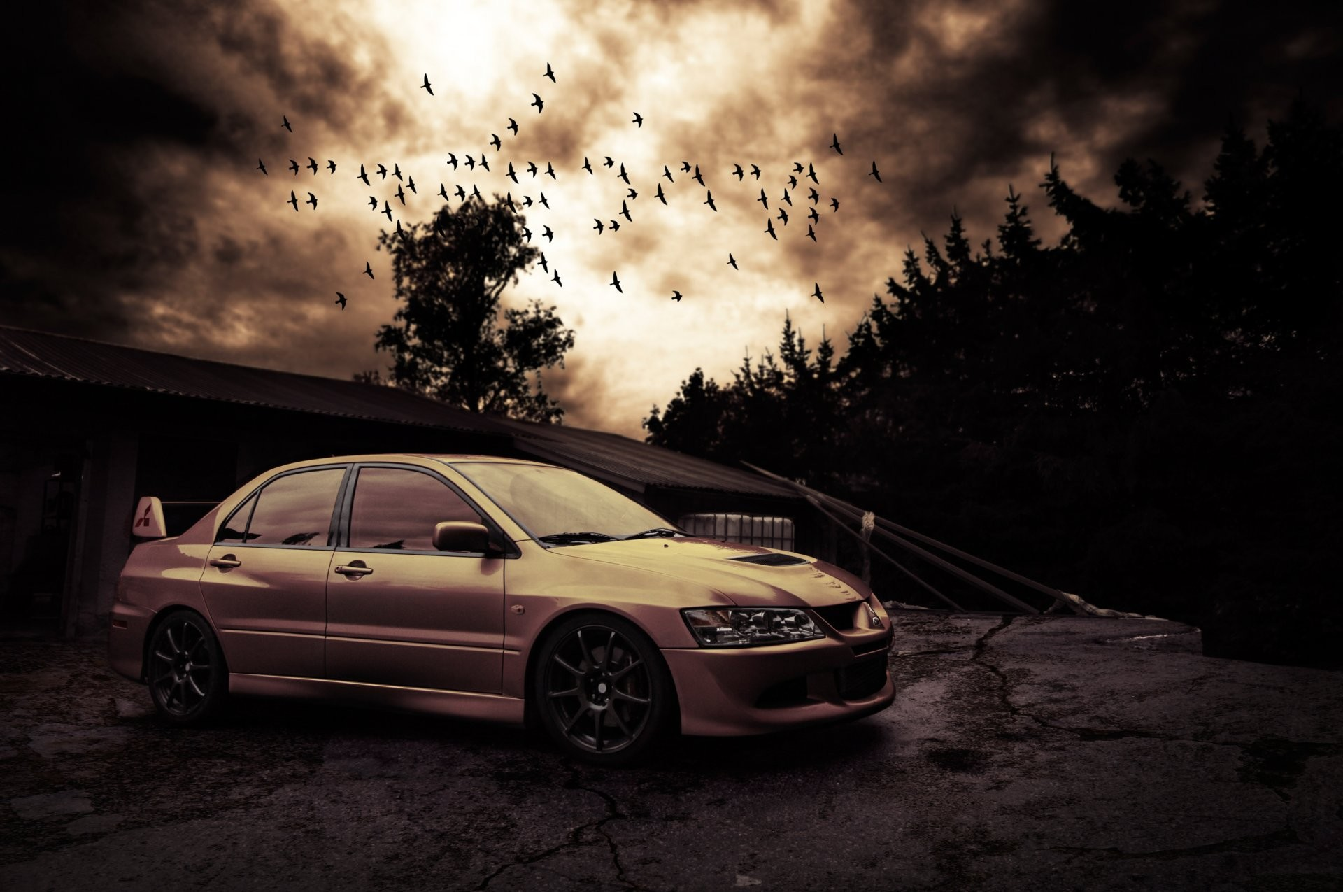 … mitsubishi lancer evo viii birds night hd wallpaper …