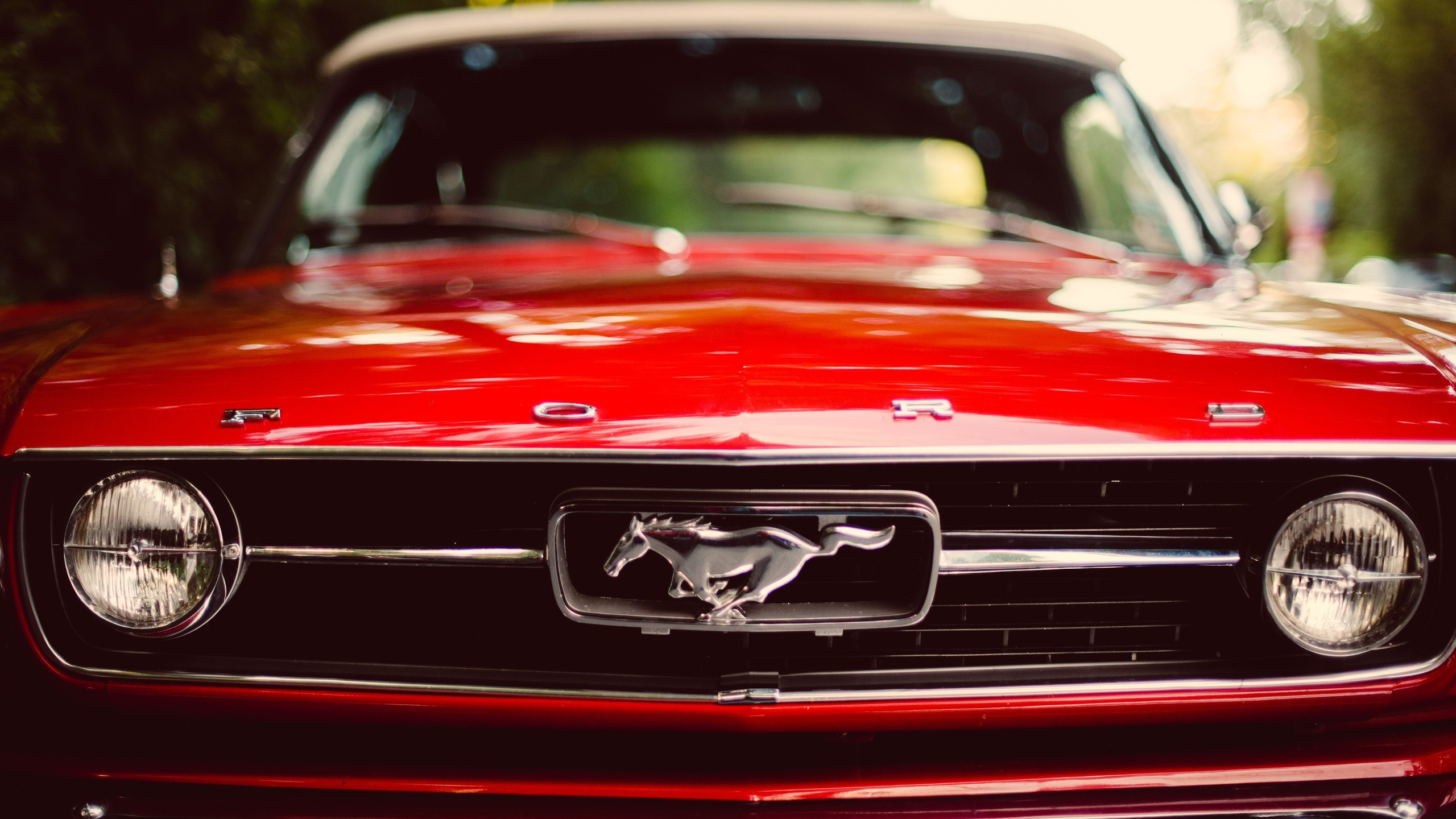 Muscle Cars Ford Mustang Red Car Wallpaper Hd
