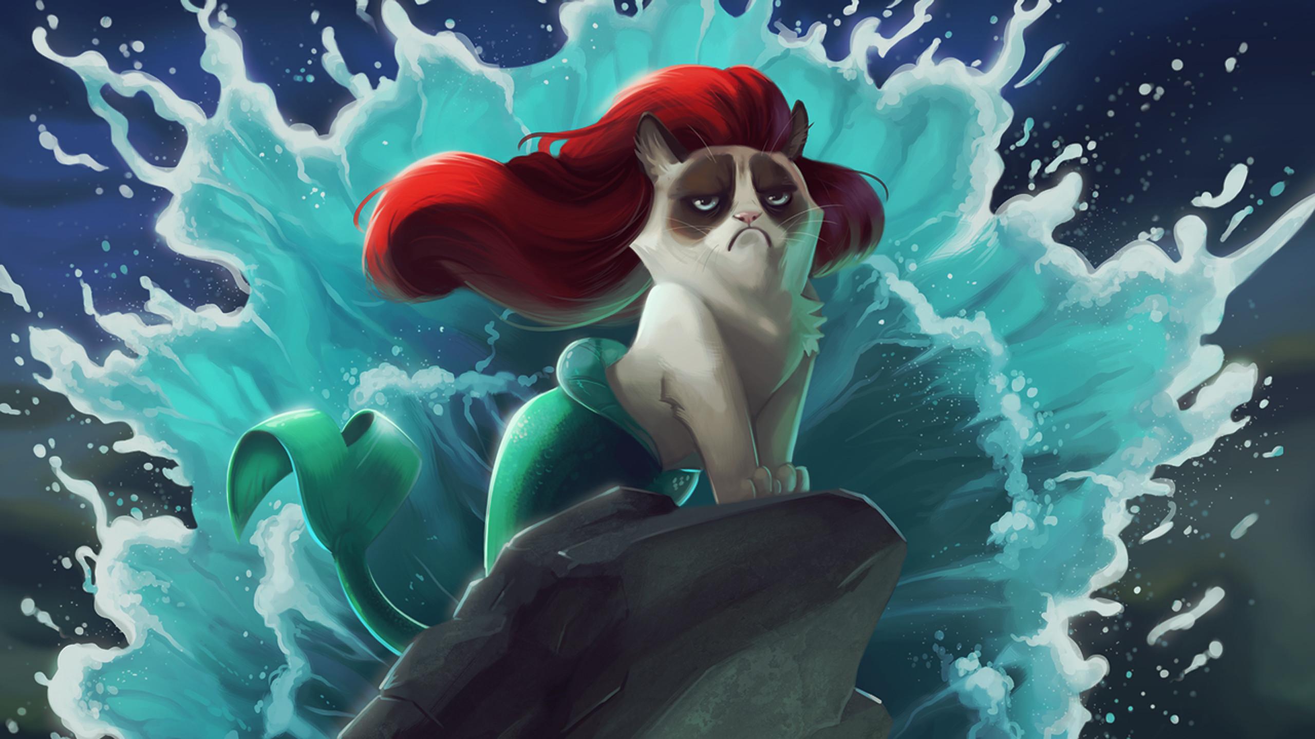 Wallpaper Cat, Mermaid, Cartoon, Grumpy cat