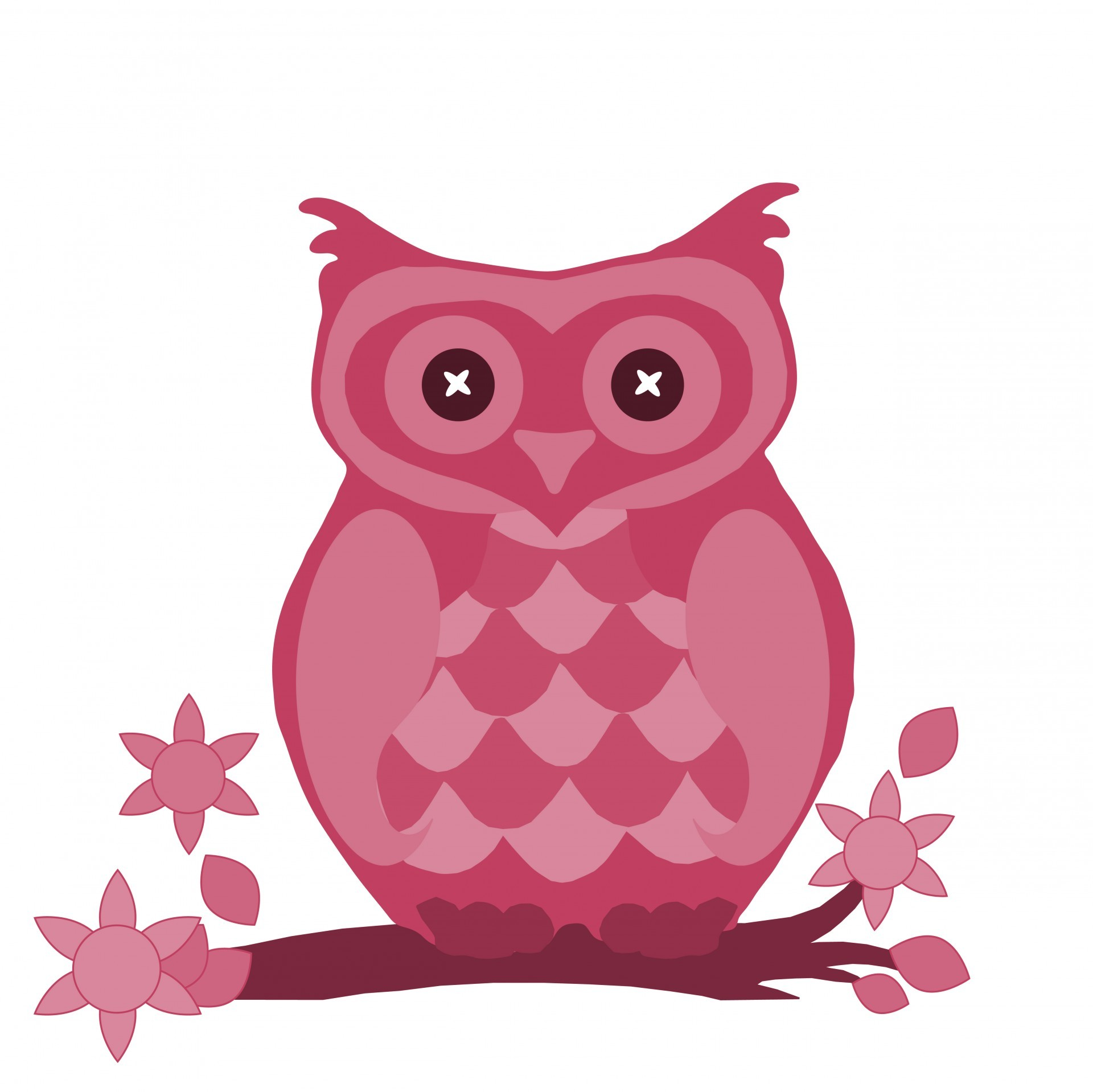 pin Barn Owl clipart wise owl #9