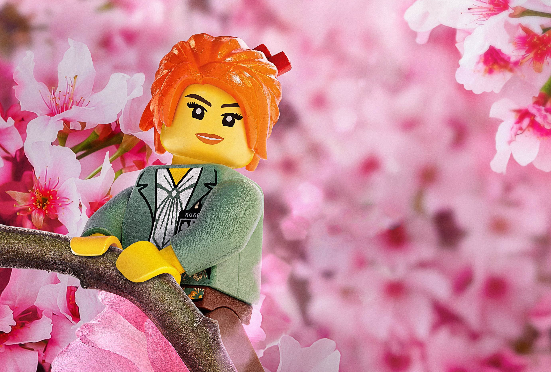 Movie – The Lego Ninjago Movie Lego Blossom Wallpaper