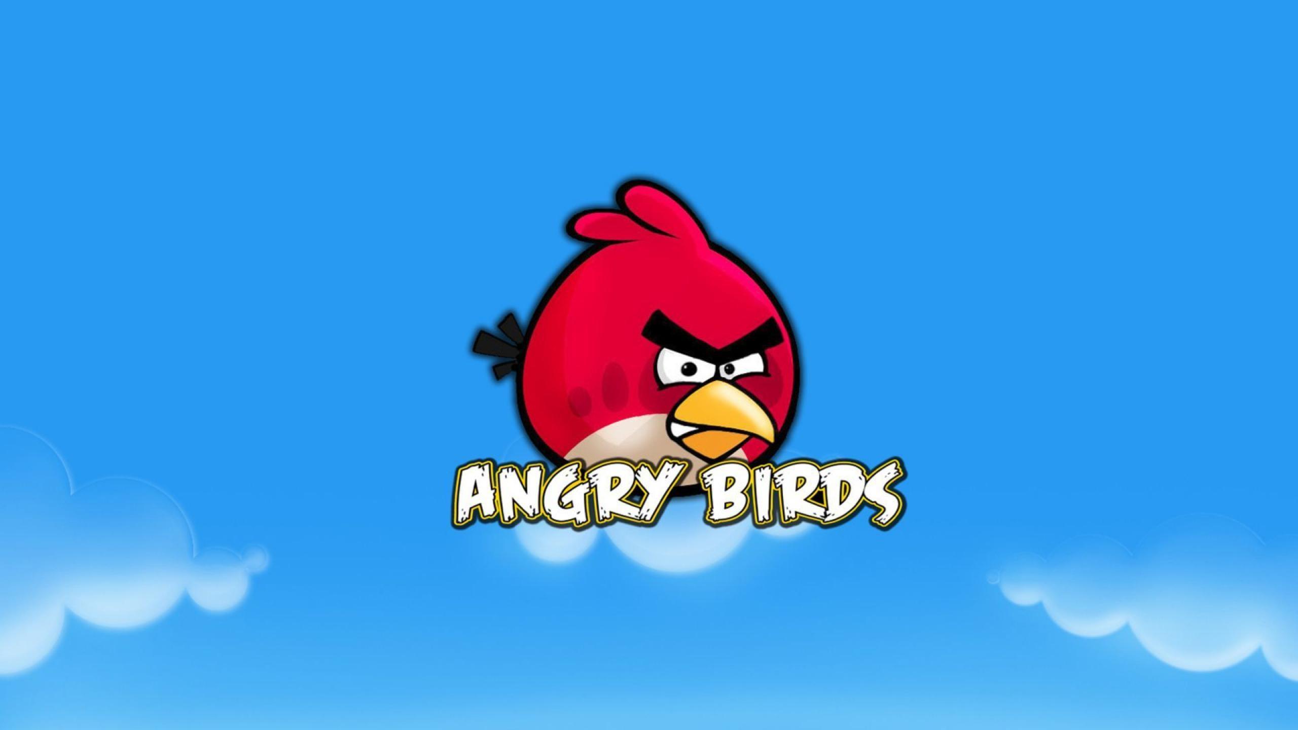 Red Bird HD Wallpaper