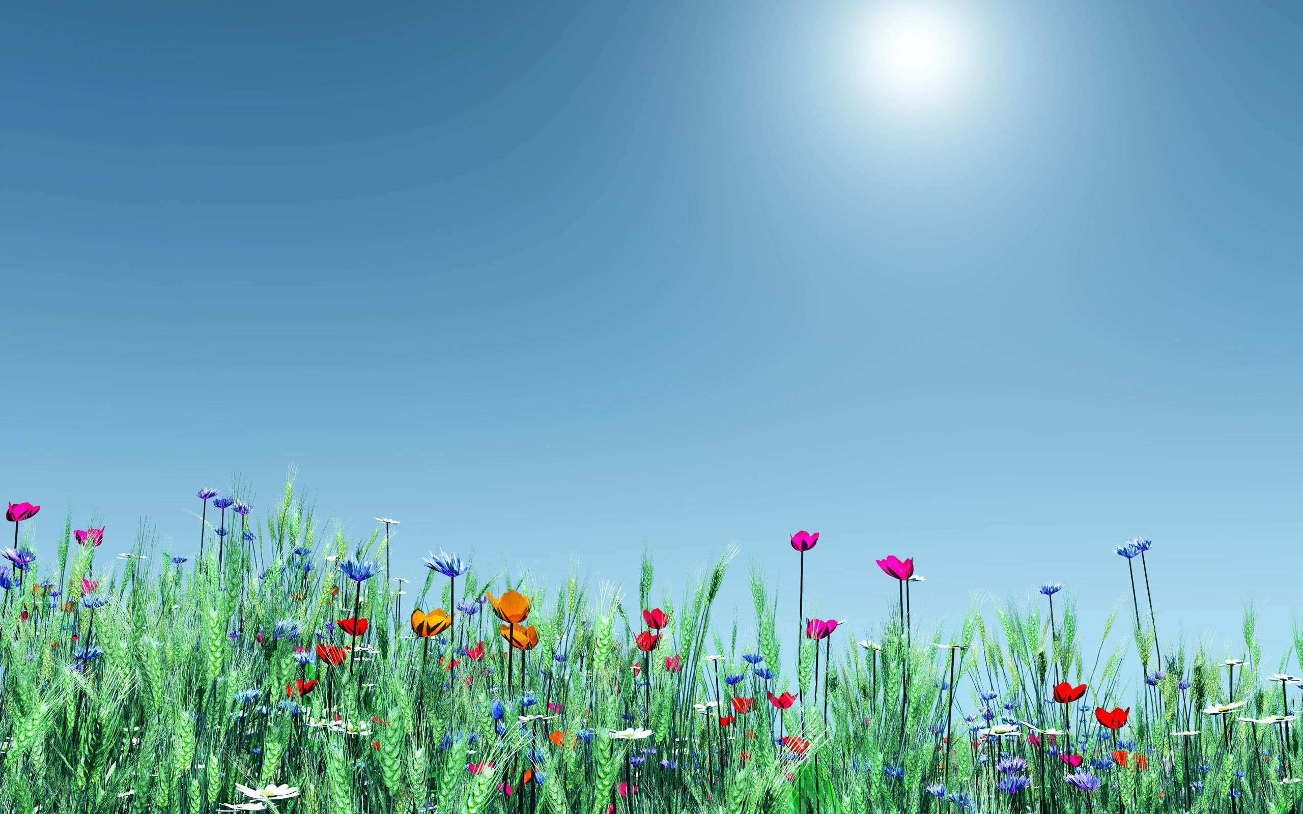 Spring Flowers Windows 8 and 8.1 Wallpapers | Windows 8.1 Themes .