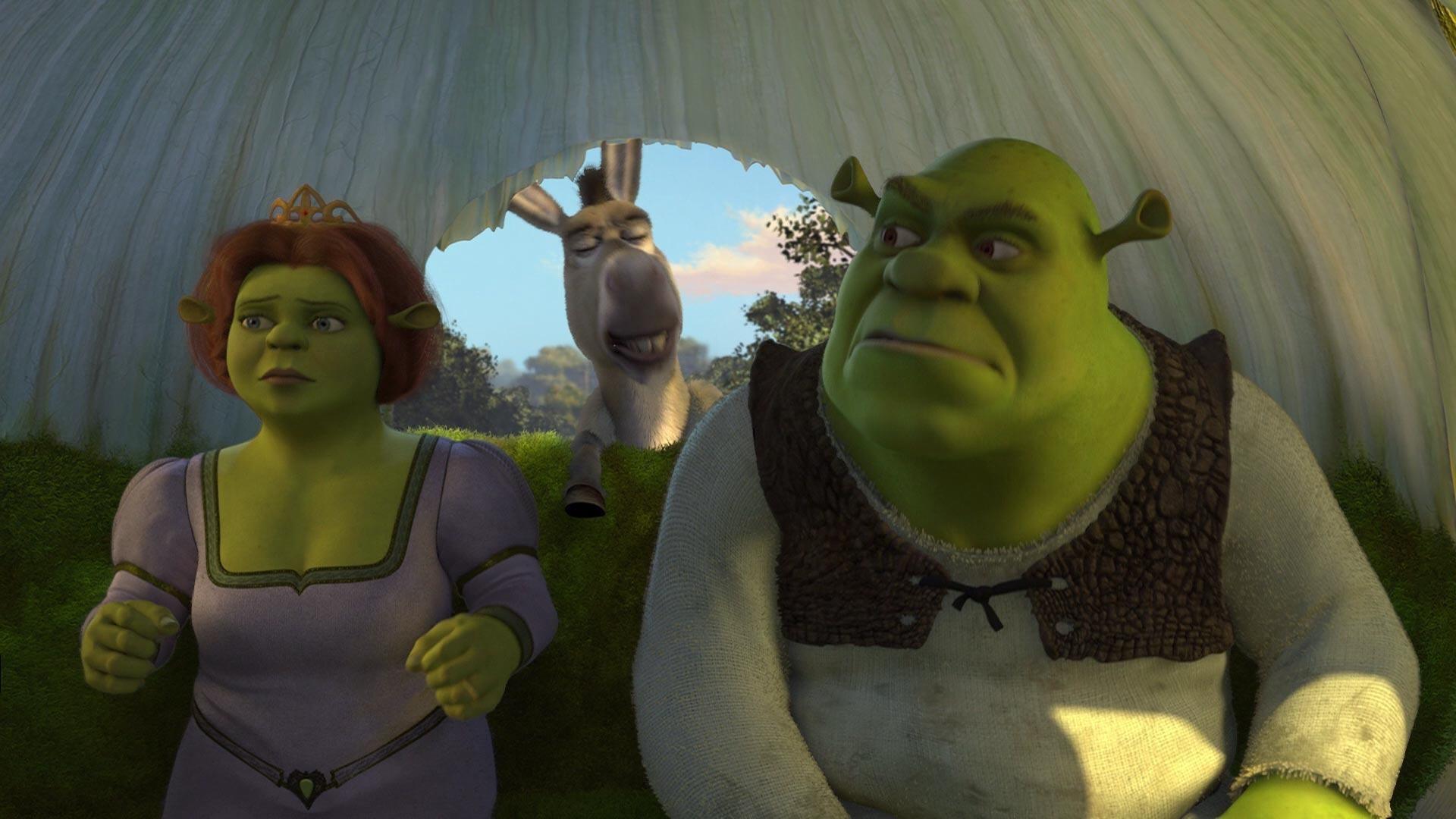 Images For > Shrek 2 Fiona
