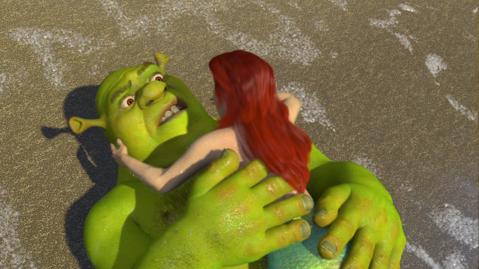 Image – Shrek kissed Ariel 4.jpg | Dreamworks Animation Wiki | FANDOM  powered by Wikia