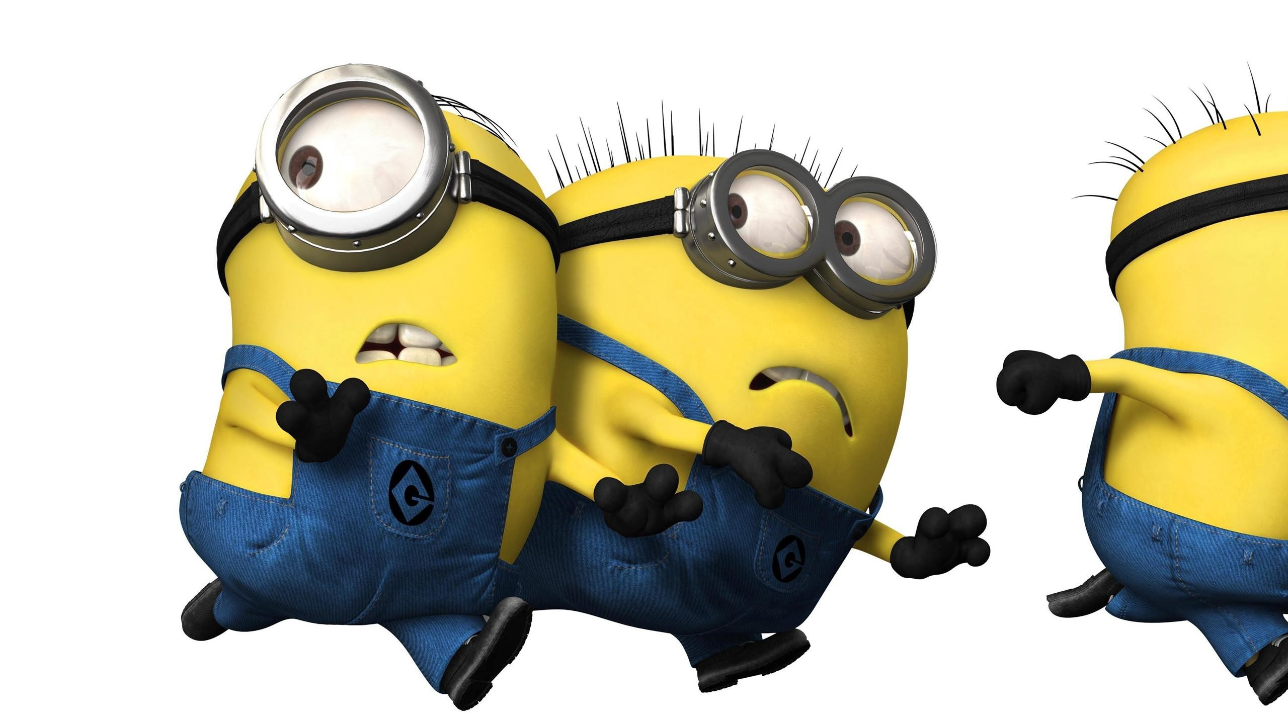 Cartoons Despicable Me Funny Wallpapers Images Photos 2560×1440 Minion  Despicable Me Wallpapers (38