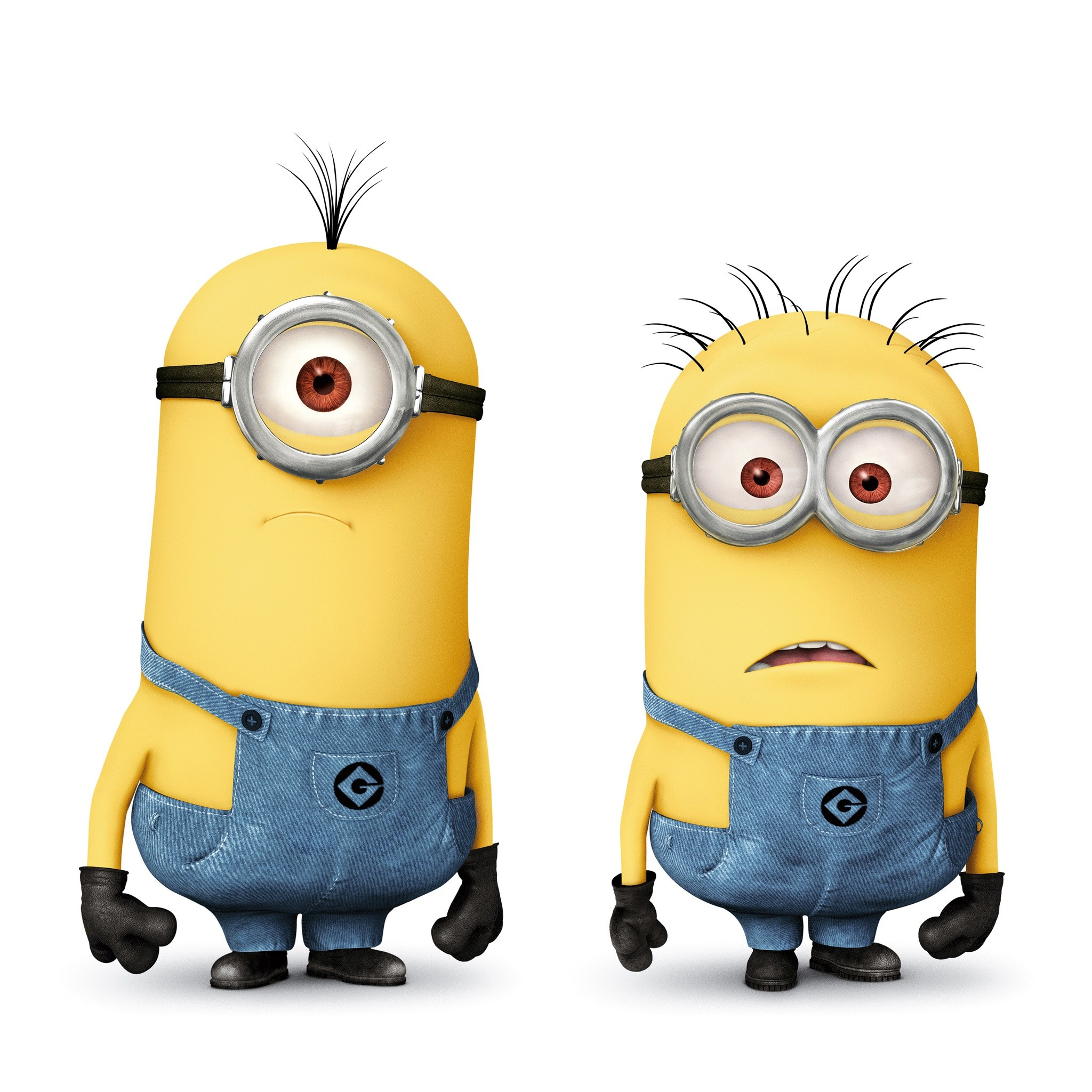 minions | Minions in Despicable Me 2 HD Wallpaper – iHD Wallpapers
