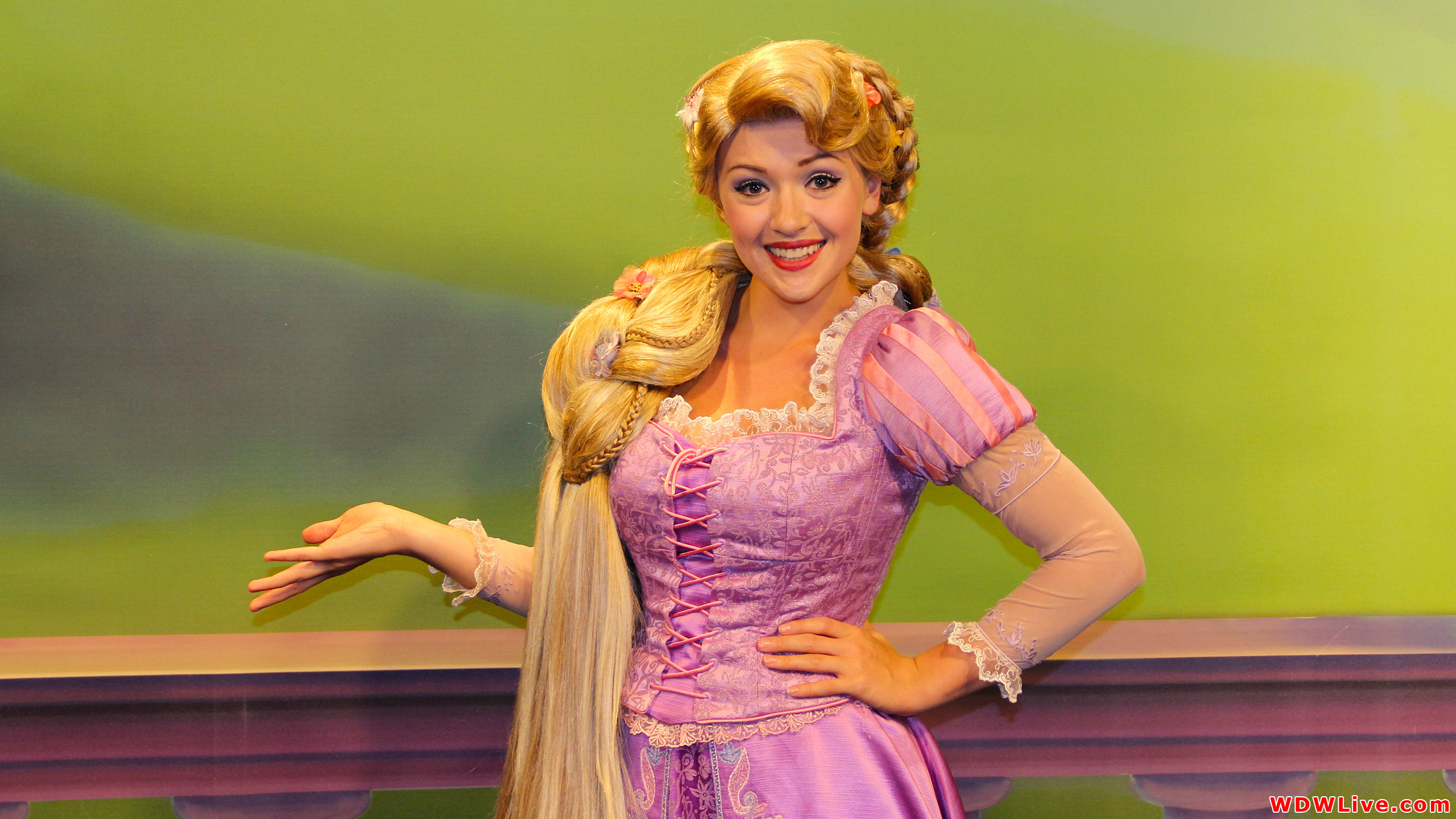 Rapunzel: Rapunzel from the Disney animated film Tangled!