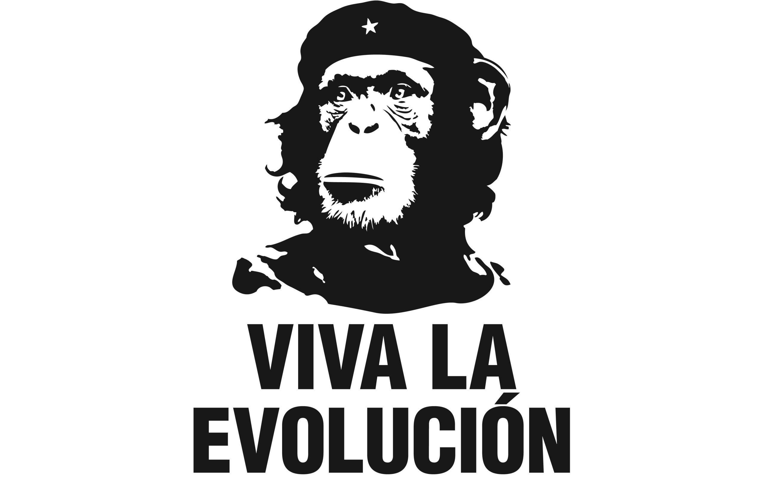 Che Troll [Paullus23] | Che Guevara | Pinterest | Che guevara, deviantART  and Social community
