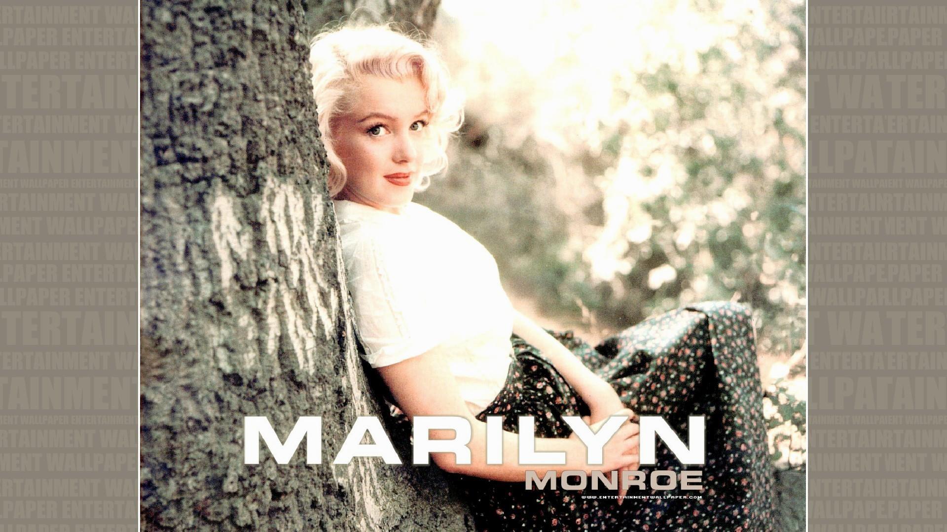 4. marilyn-monroe-desktop-wallpaper5-600×338