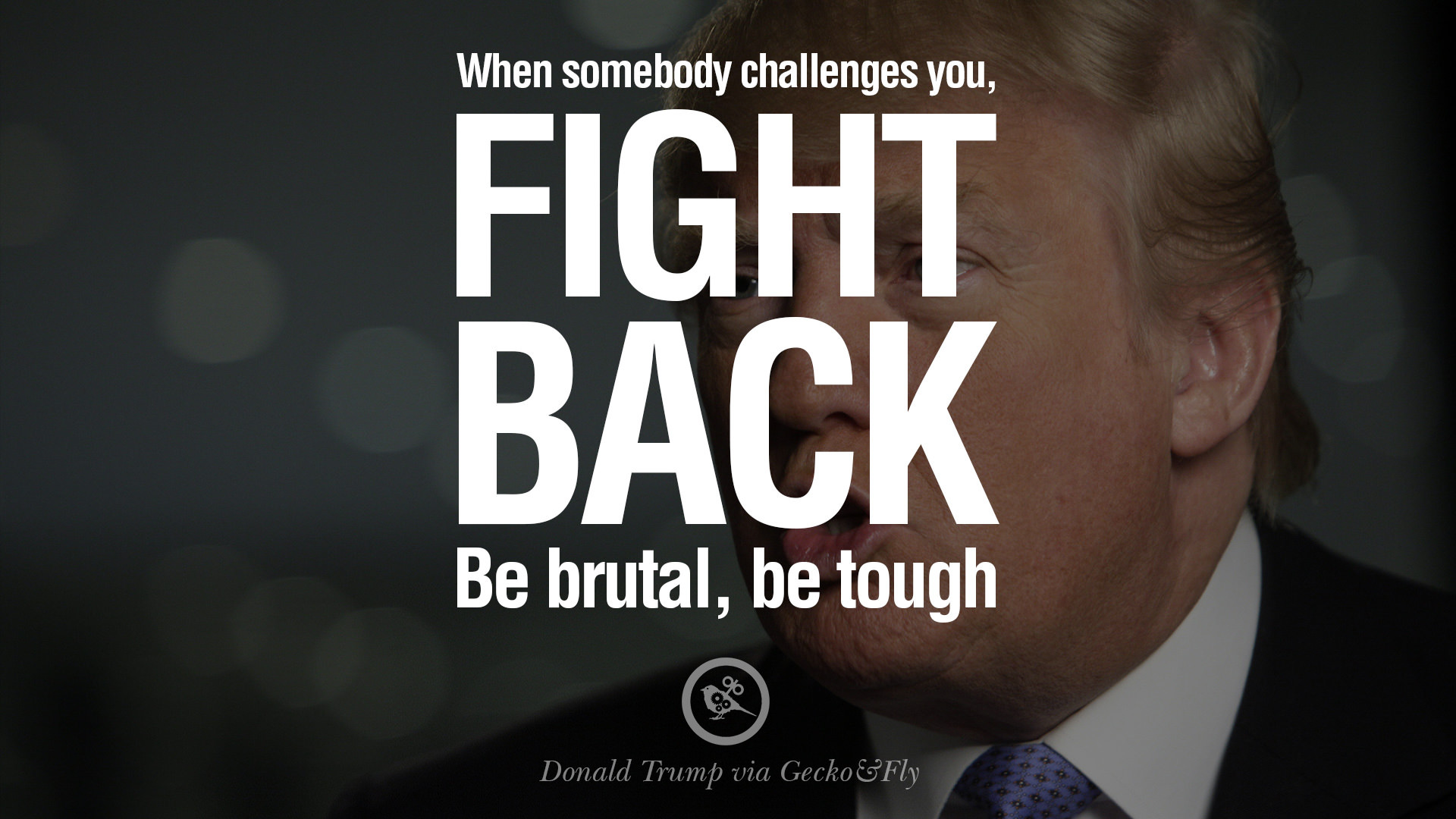 12 Quotes by Donald Trump on Success, Failure, Wealth and Entrepreneurship