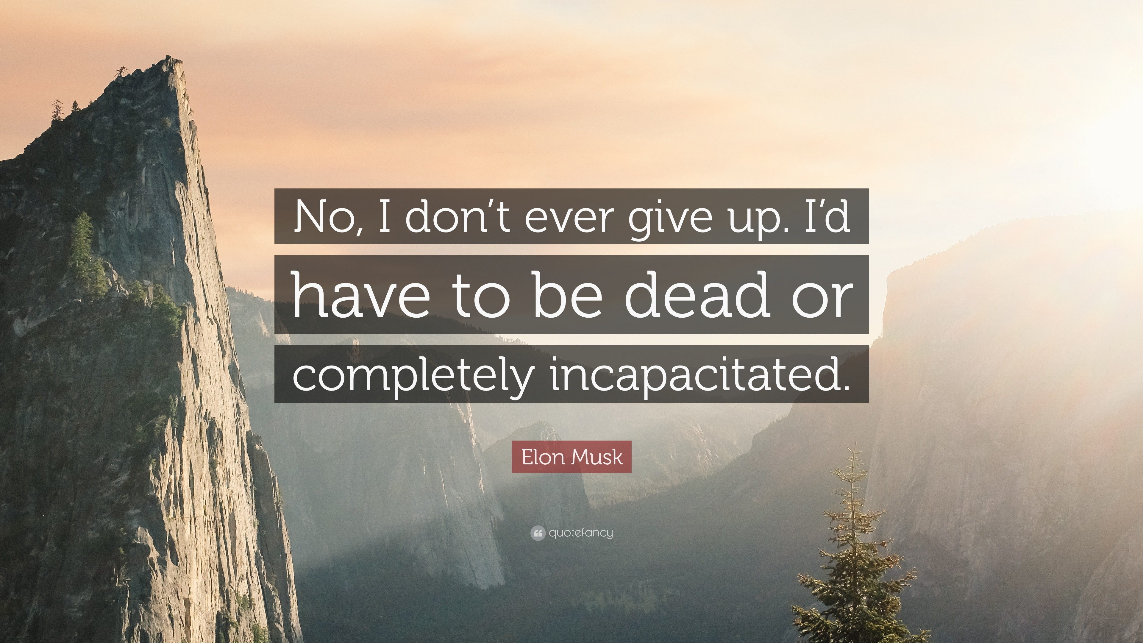 "Elon Musk Quote: ""No, I don't ever give up. I"