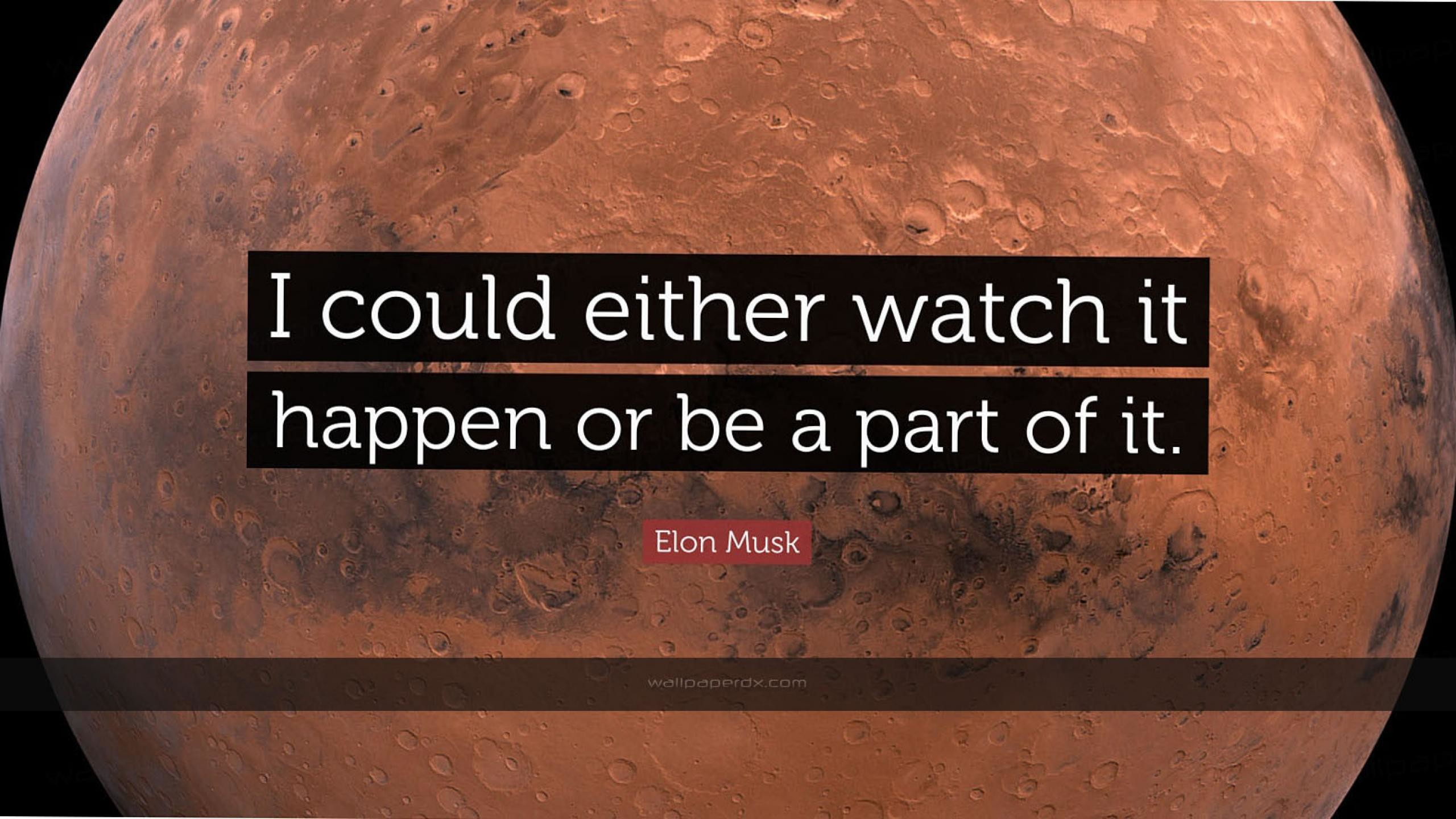2341 elon musk quote i could either watch it happen or be a part of it hd  wallpaper – 2560 x 1440