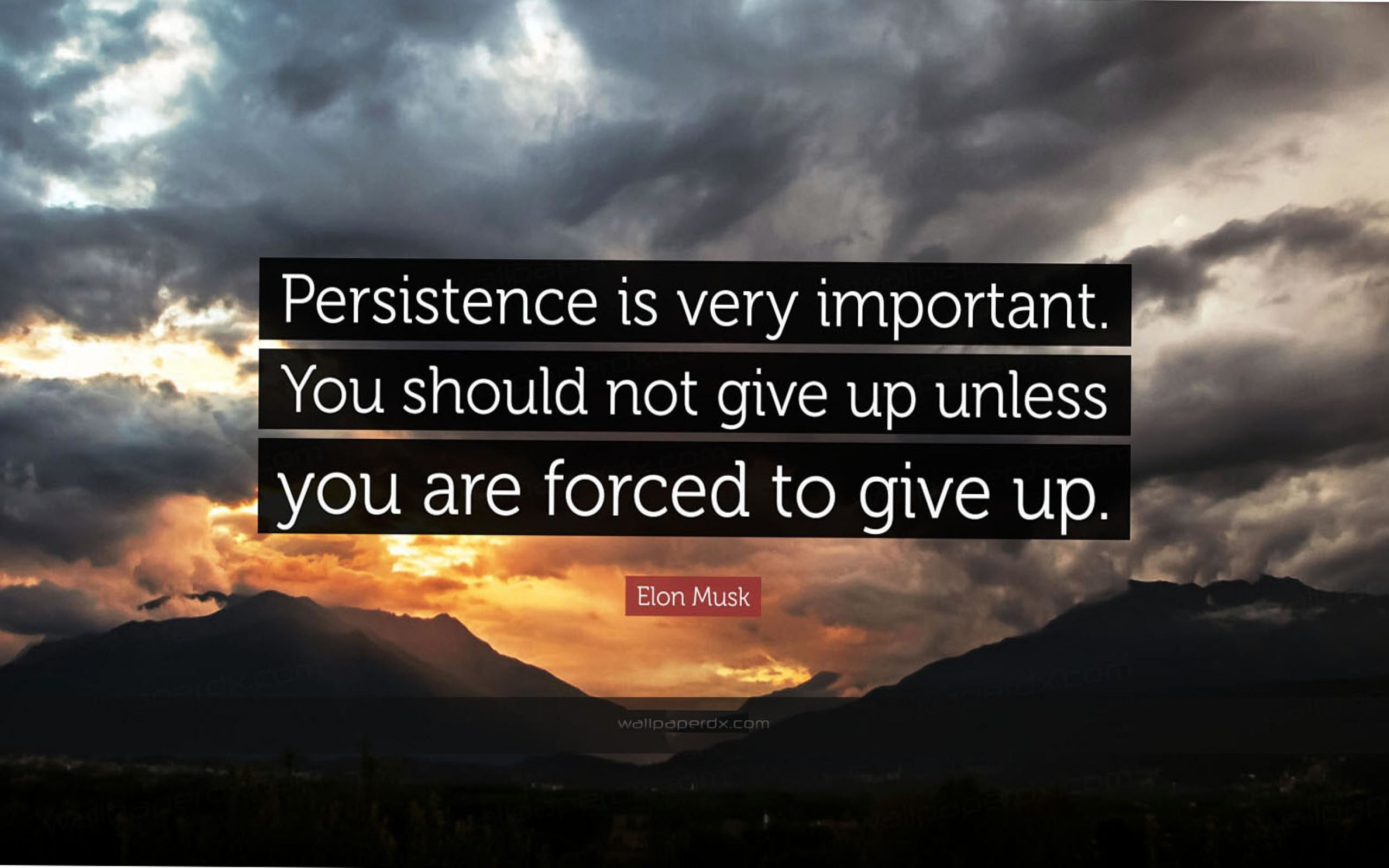 2320 elon musk quote persistence is very important you should not give hd  wallpaper – 2560 x 1600