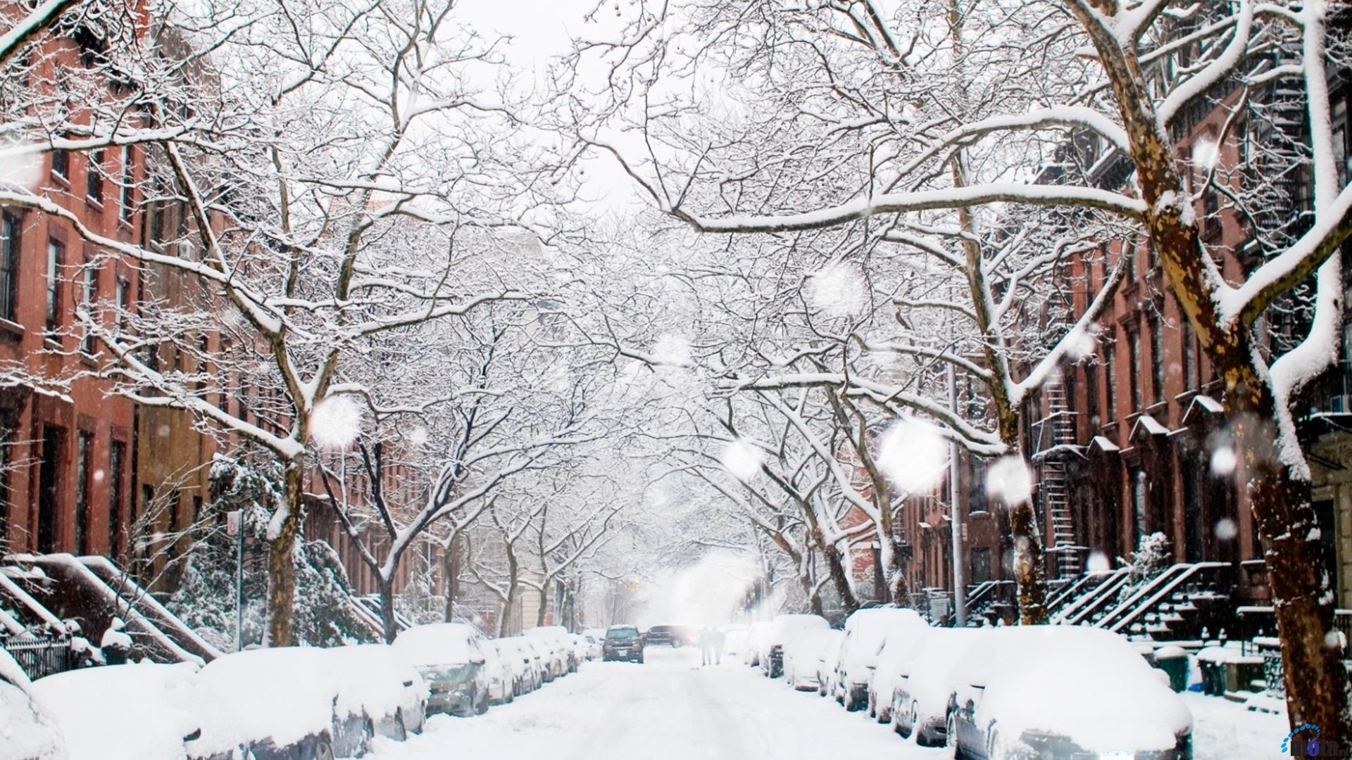 Winter City Wallpaper Free