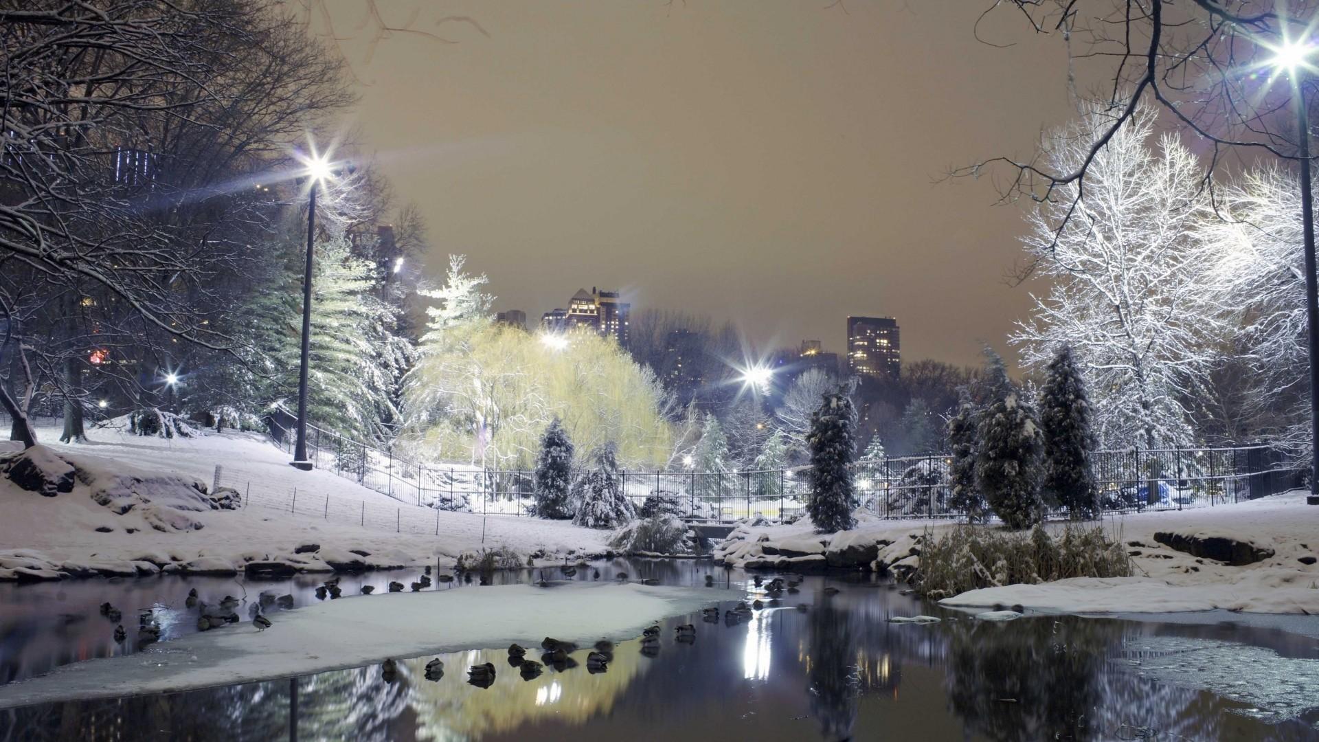 Wallpaper city , park, trees, winter, snow, lights