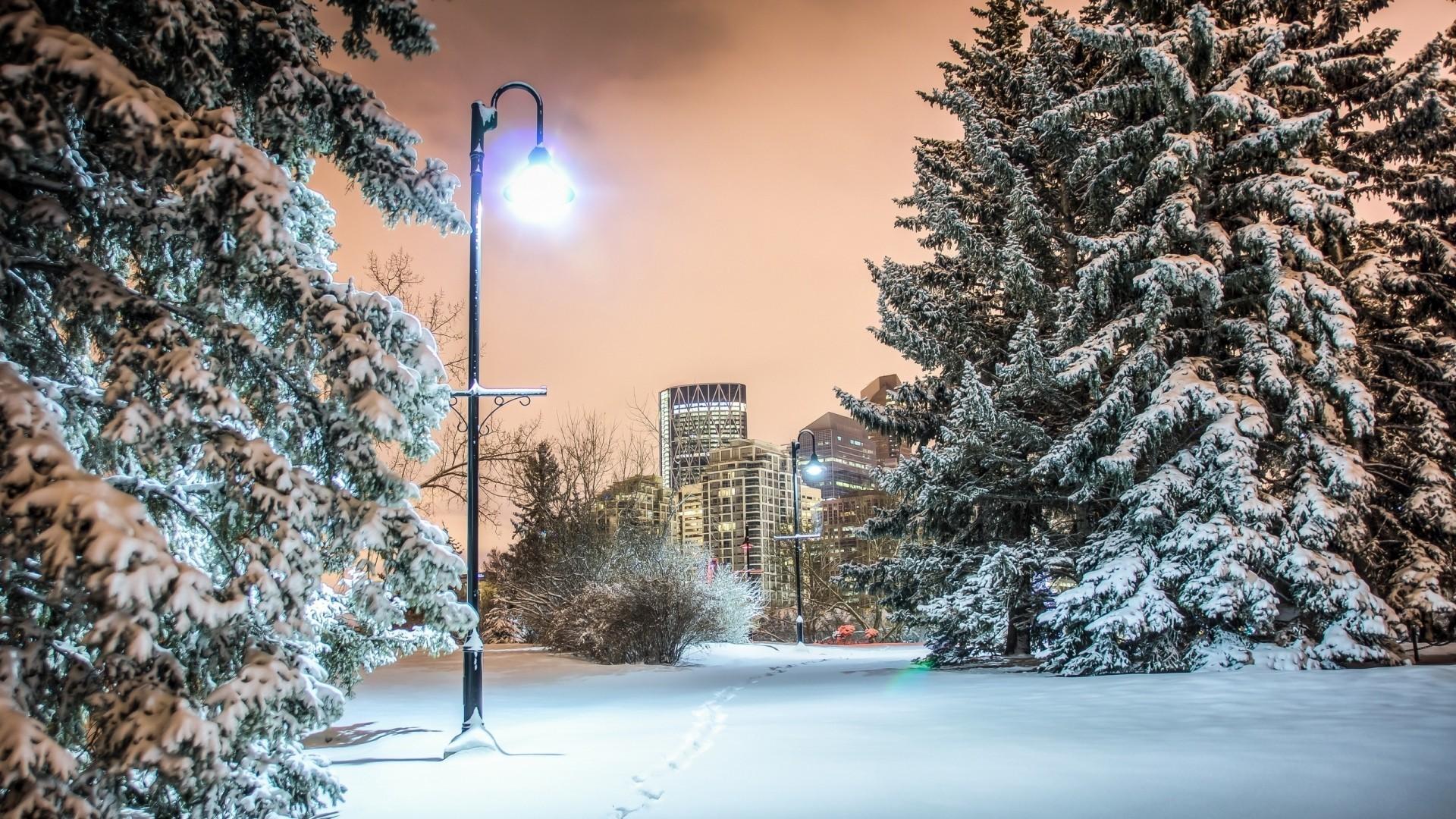 Post Tag – Winter Wondrous Light City Trees Park Post Wallpaper Desktop  Free for HD 16