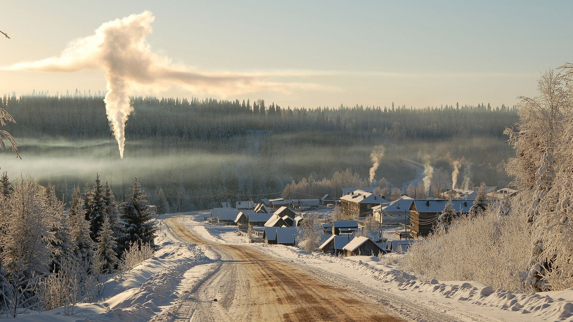 Winter Smoke City Road Trees