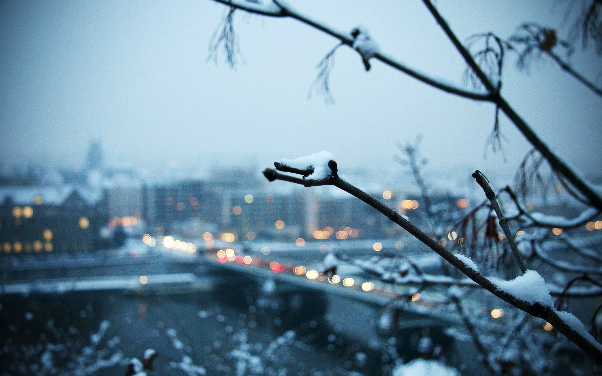winter, Landscape, Trees, Depth Of Field, Snow, City Wallpapers HD /  Desktop and Mobile Backgrounds