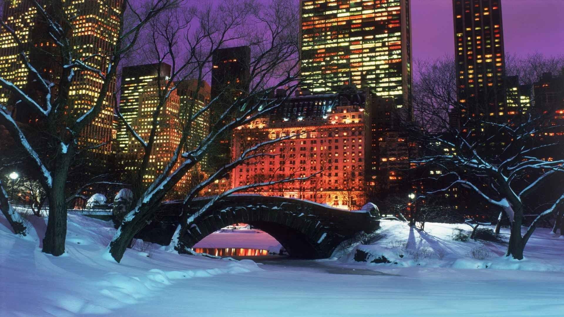 winter New York City Central Park wallpaper background